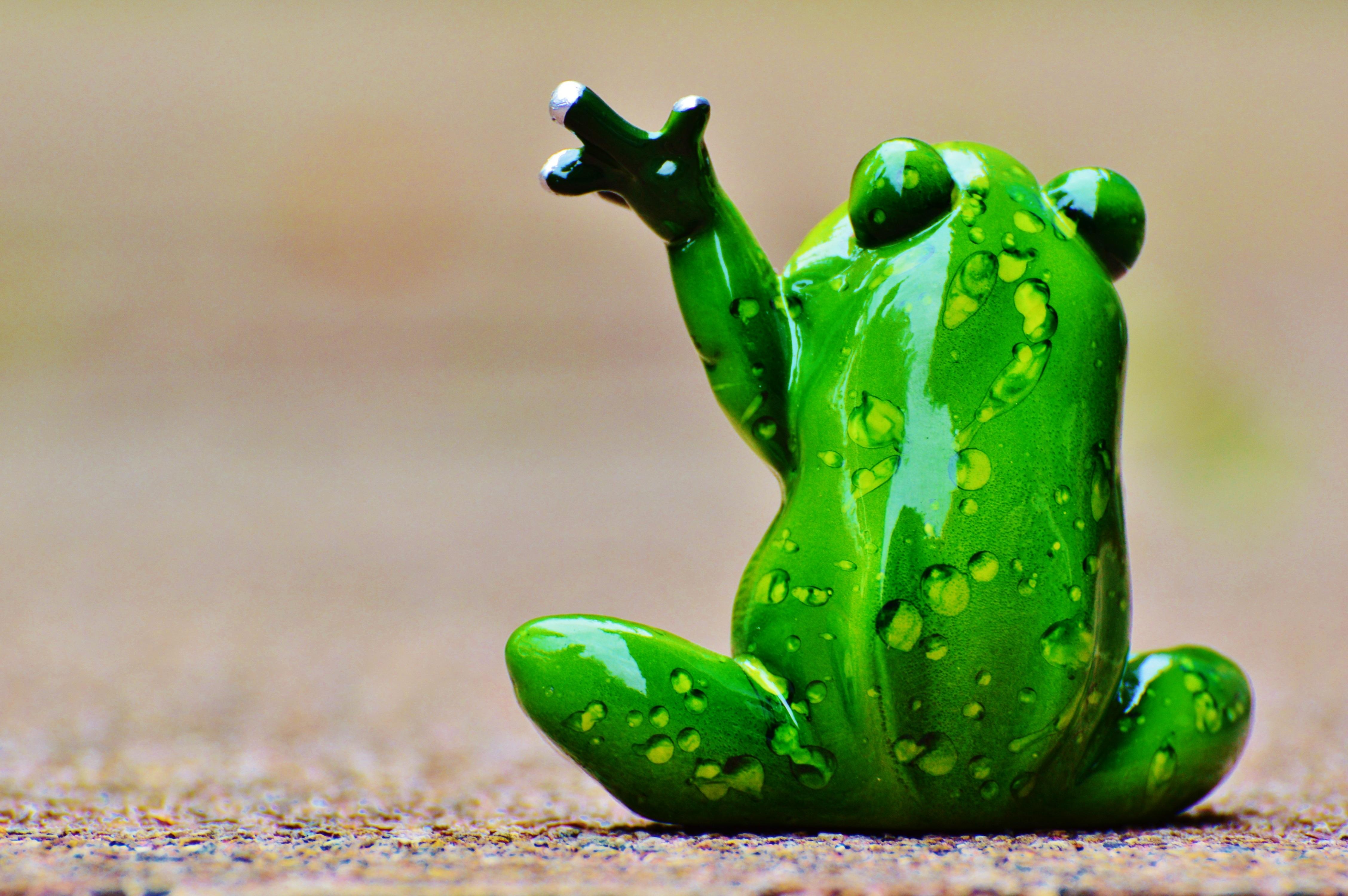 Зеленые смешные картинки, стишки рисунок цветы