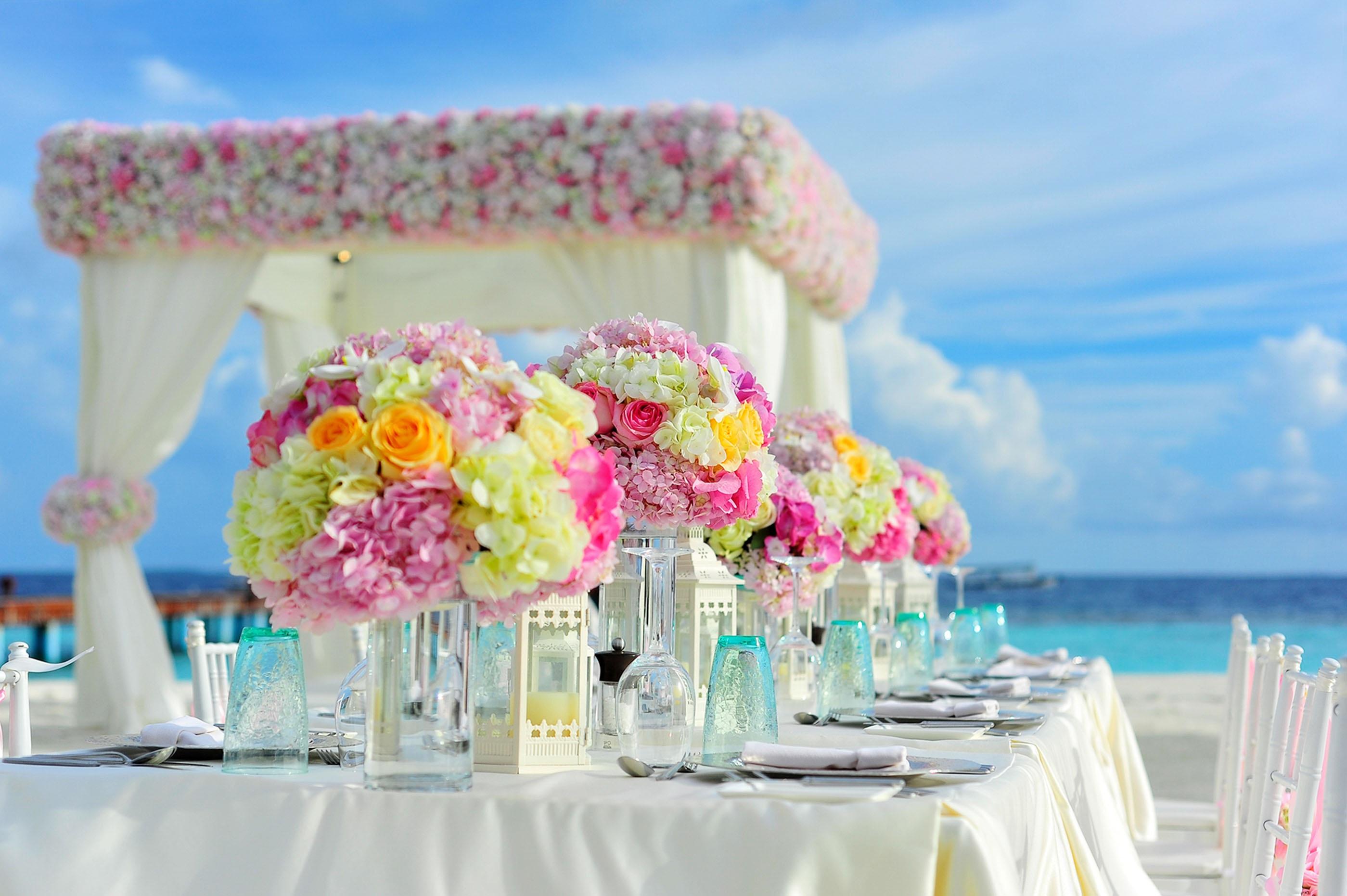 Bildet : Strand, hav, vann, blomst, sommer, feiring, måltid, tropisk ...
