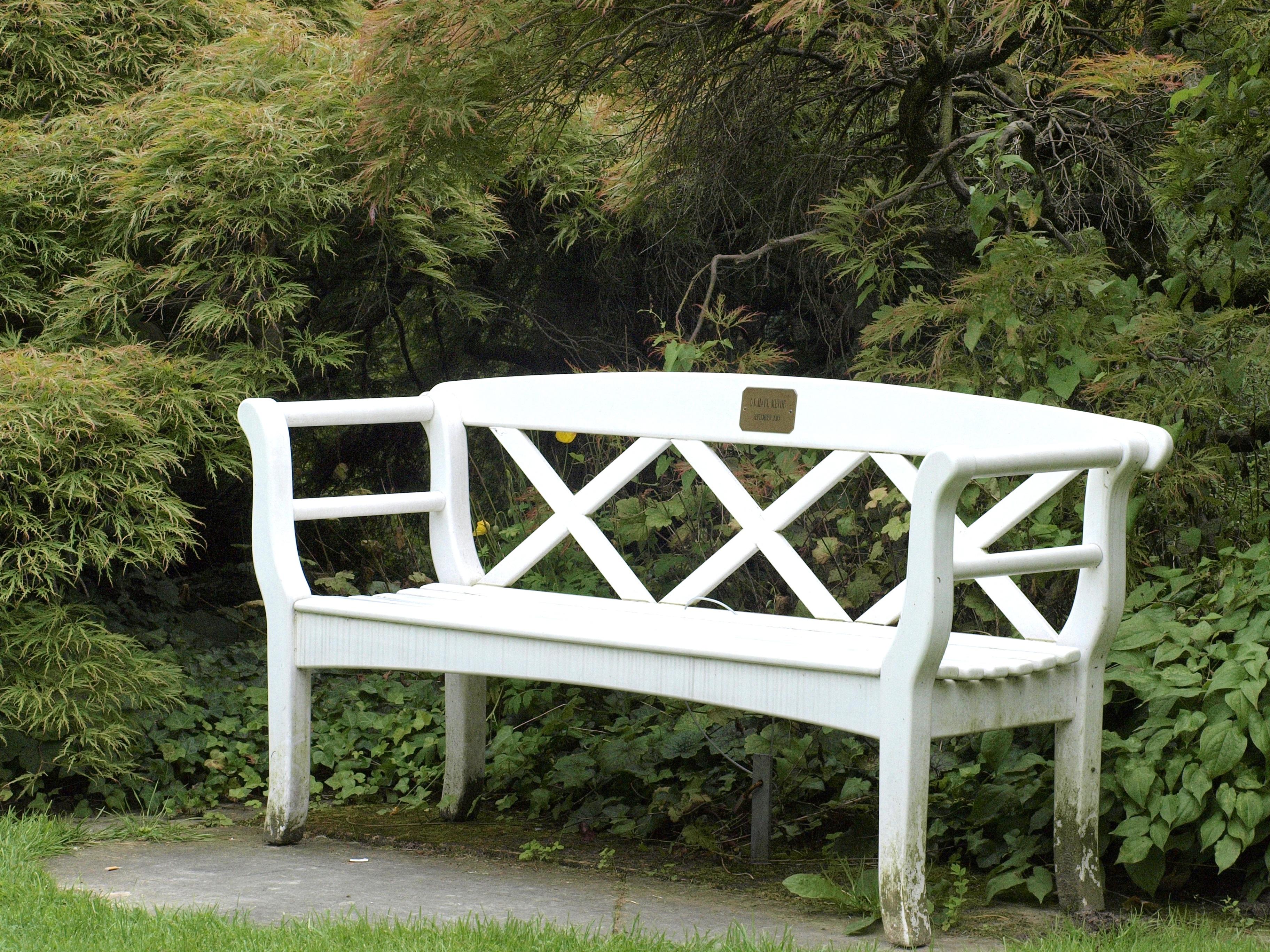 Fotos gratis : mesa, banco, Banco del parque, sentar, fuera, lugar ...