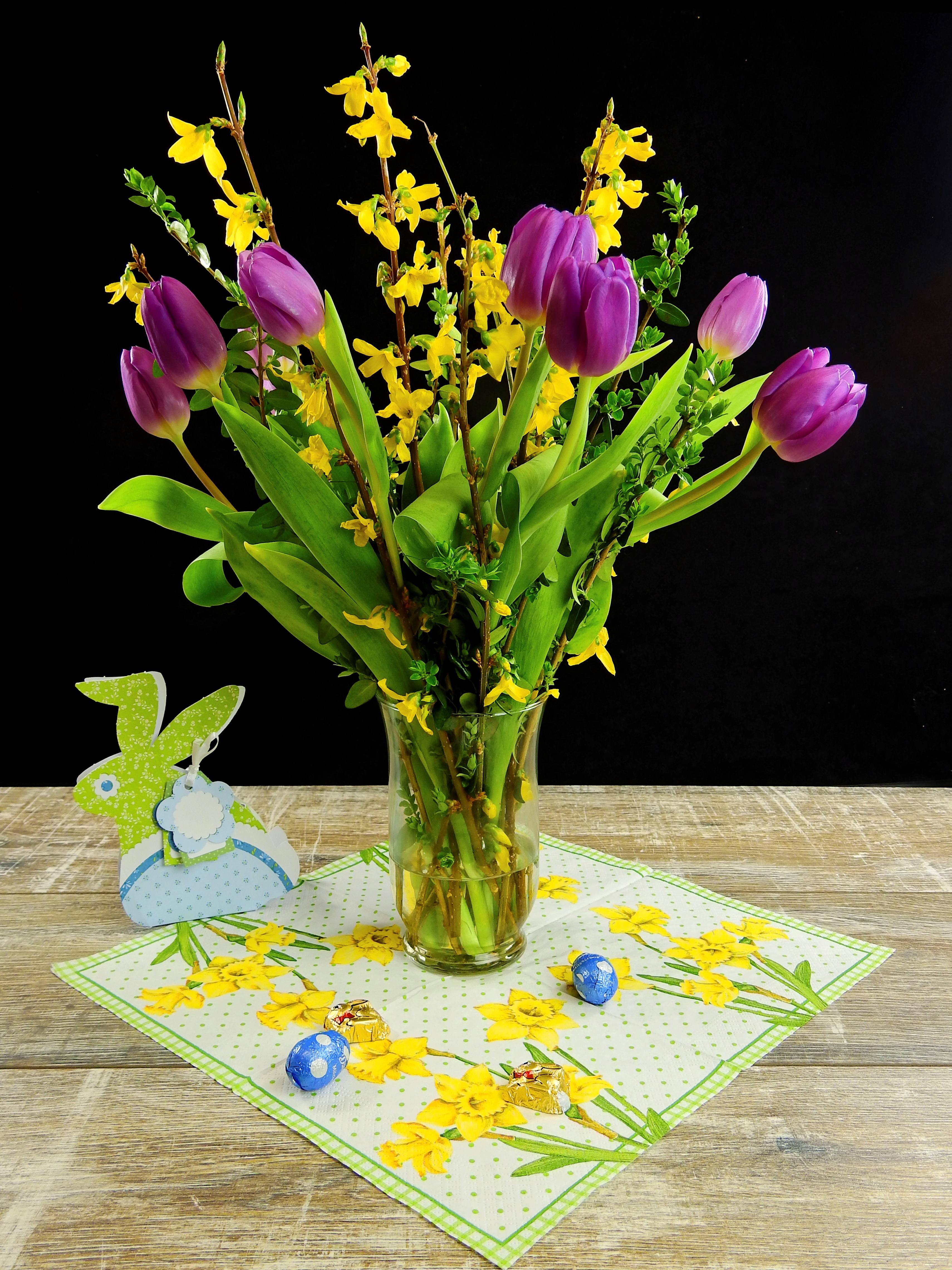 Images gratuites table fleur floraison jaune - Table plante ...
