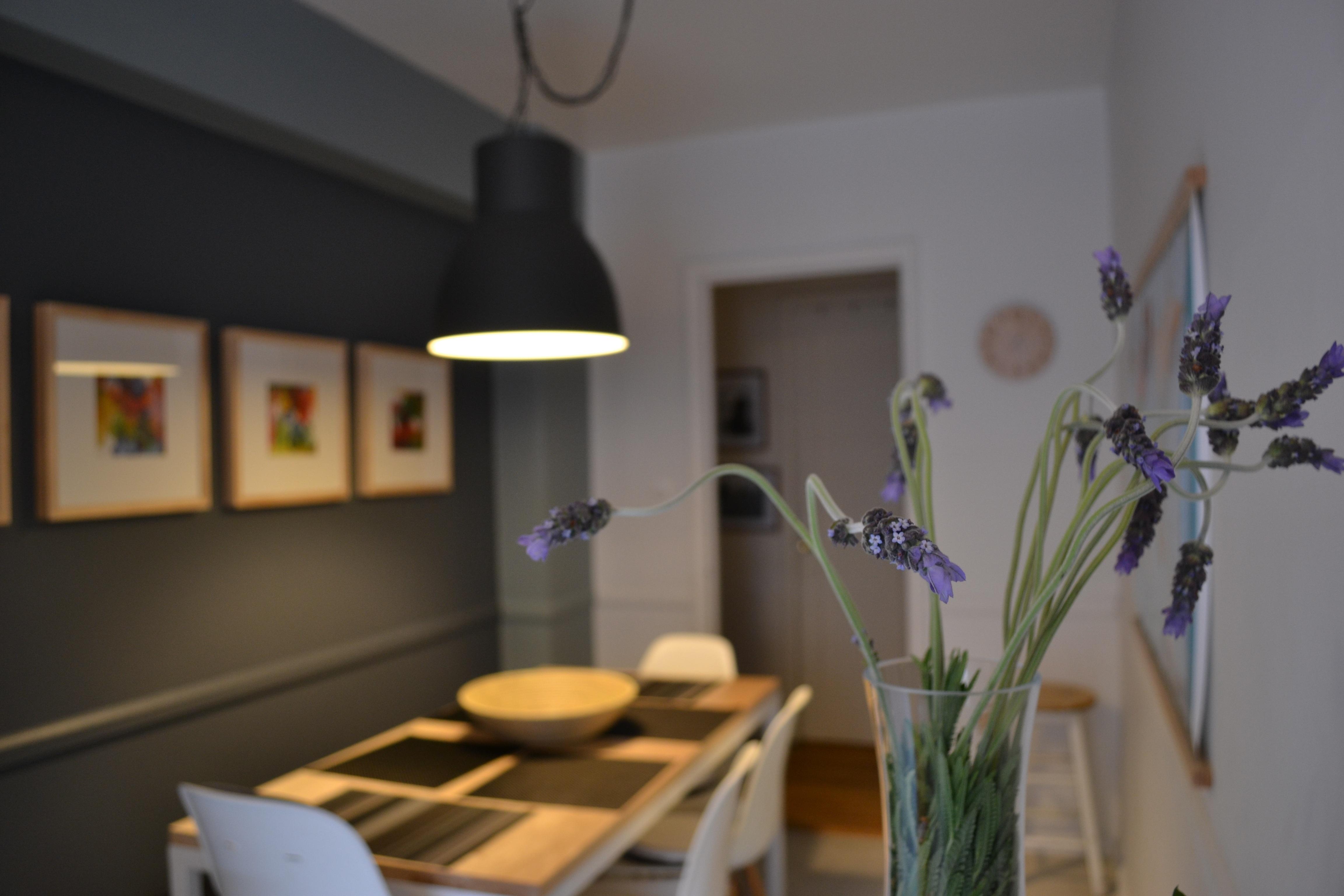 Gratis billeder : tabel, buket, værelse, belysning, lavendel ...