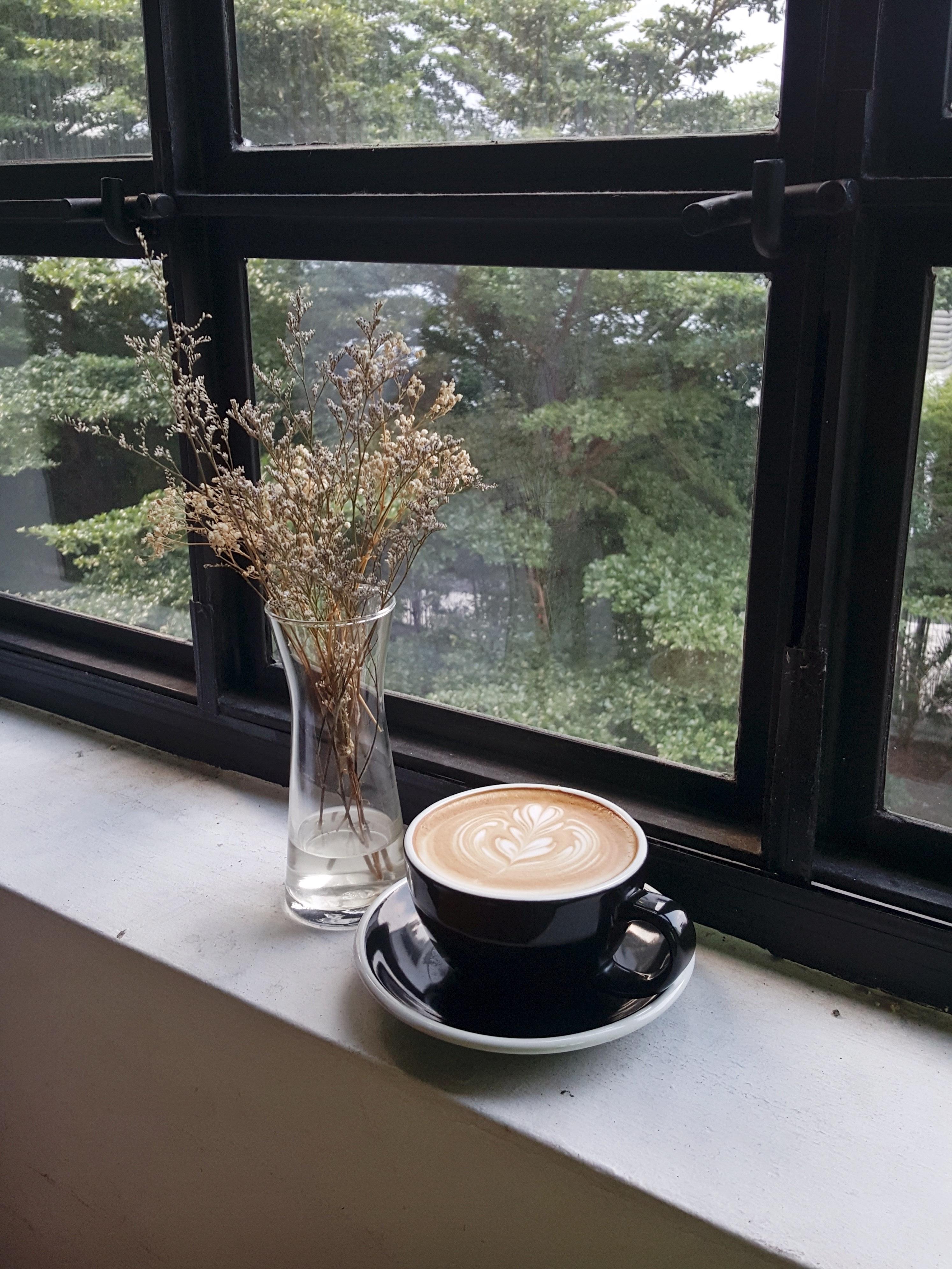 Gratis Afbeeldingen : tafel, koffie, hout, bloem, venster, glas ...