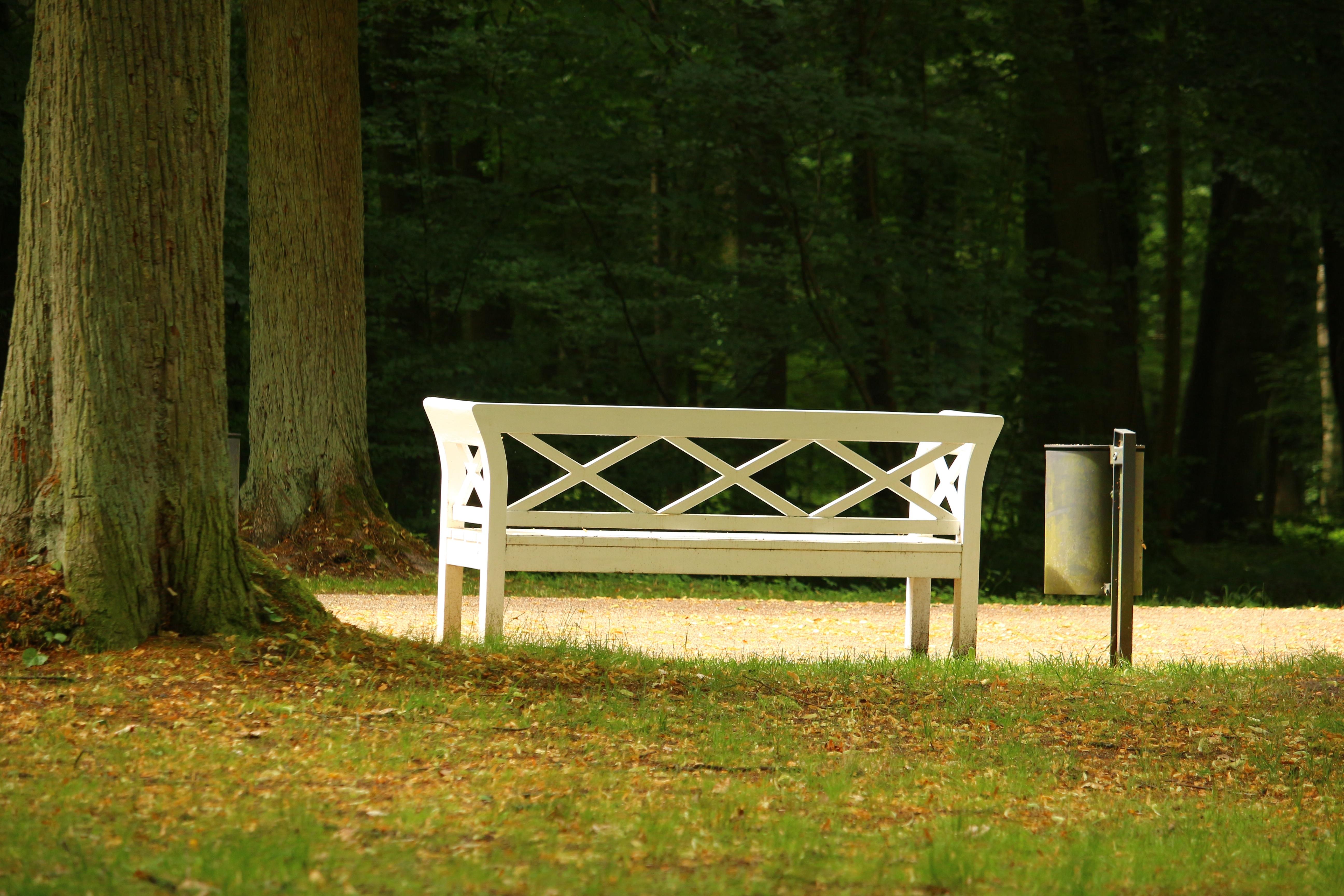 Fotos gratis : mesa, césped, madera, banco, verde, parque, patio ...