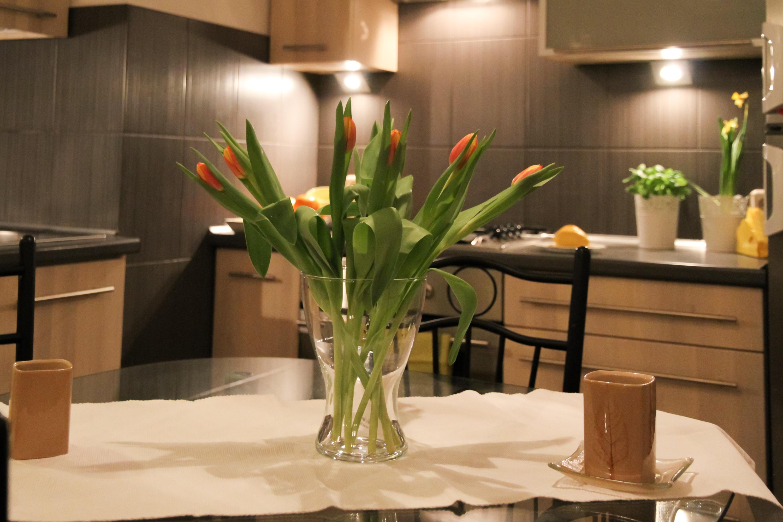 интересный дизайн кухни с тюльпанами фото для обоих был