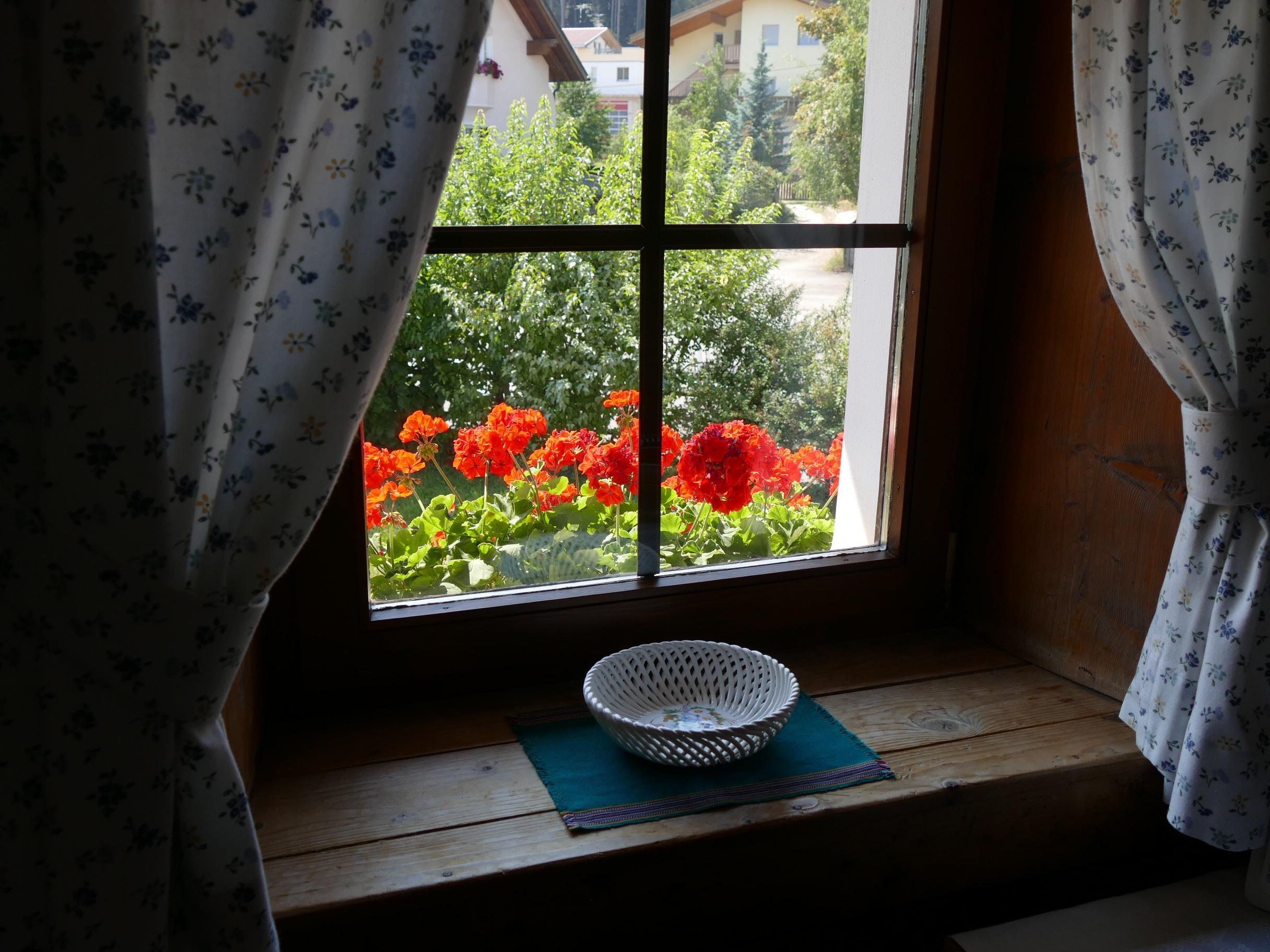 Table maison fleur fenêtre verre maison mur vert rouge couleur bleu salon meubles chambre fleurs design