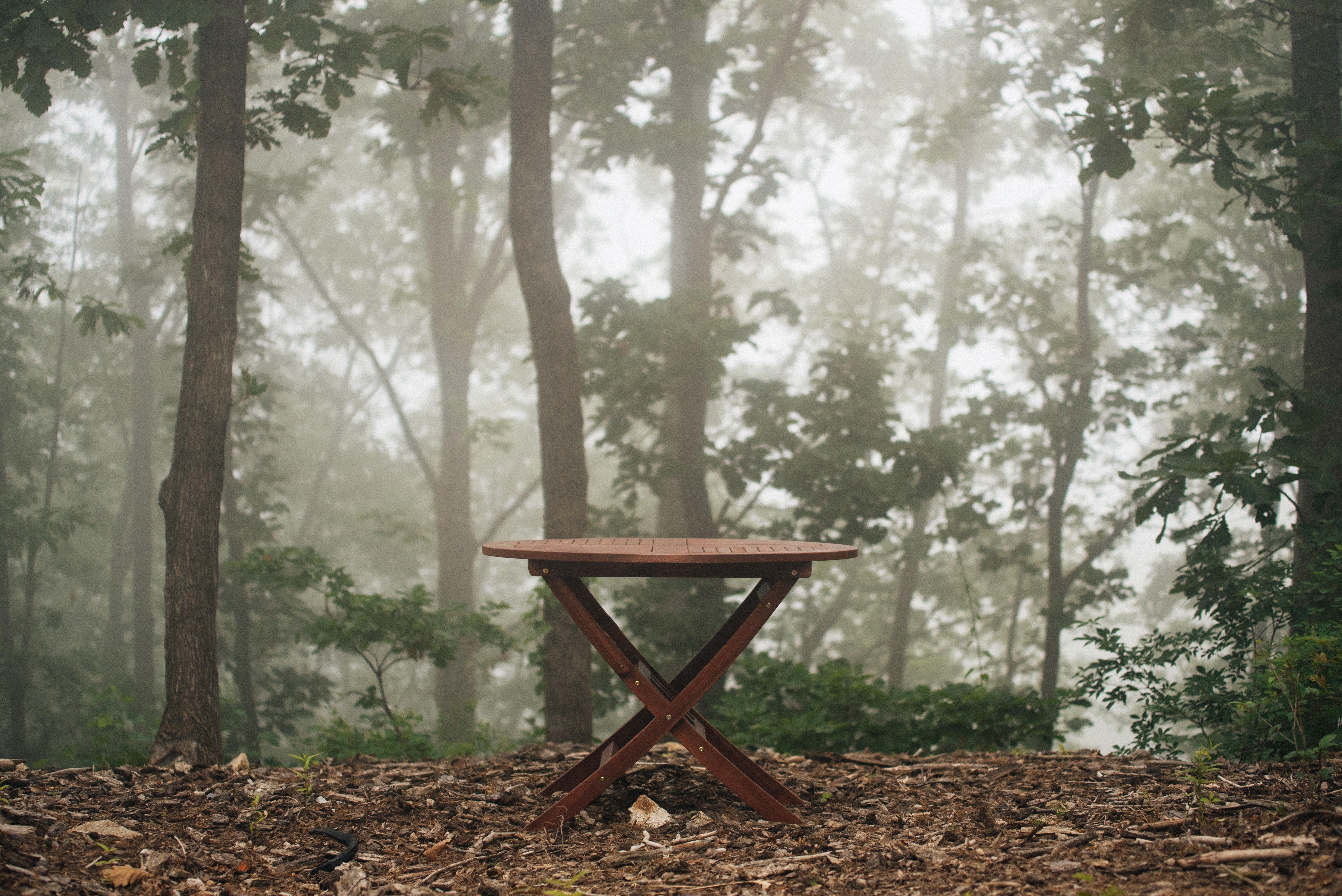 Fotos gratis : mesa, paisaje, árbol, naturaleza, bosque, al aire ...