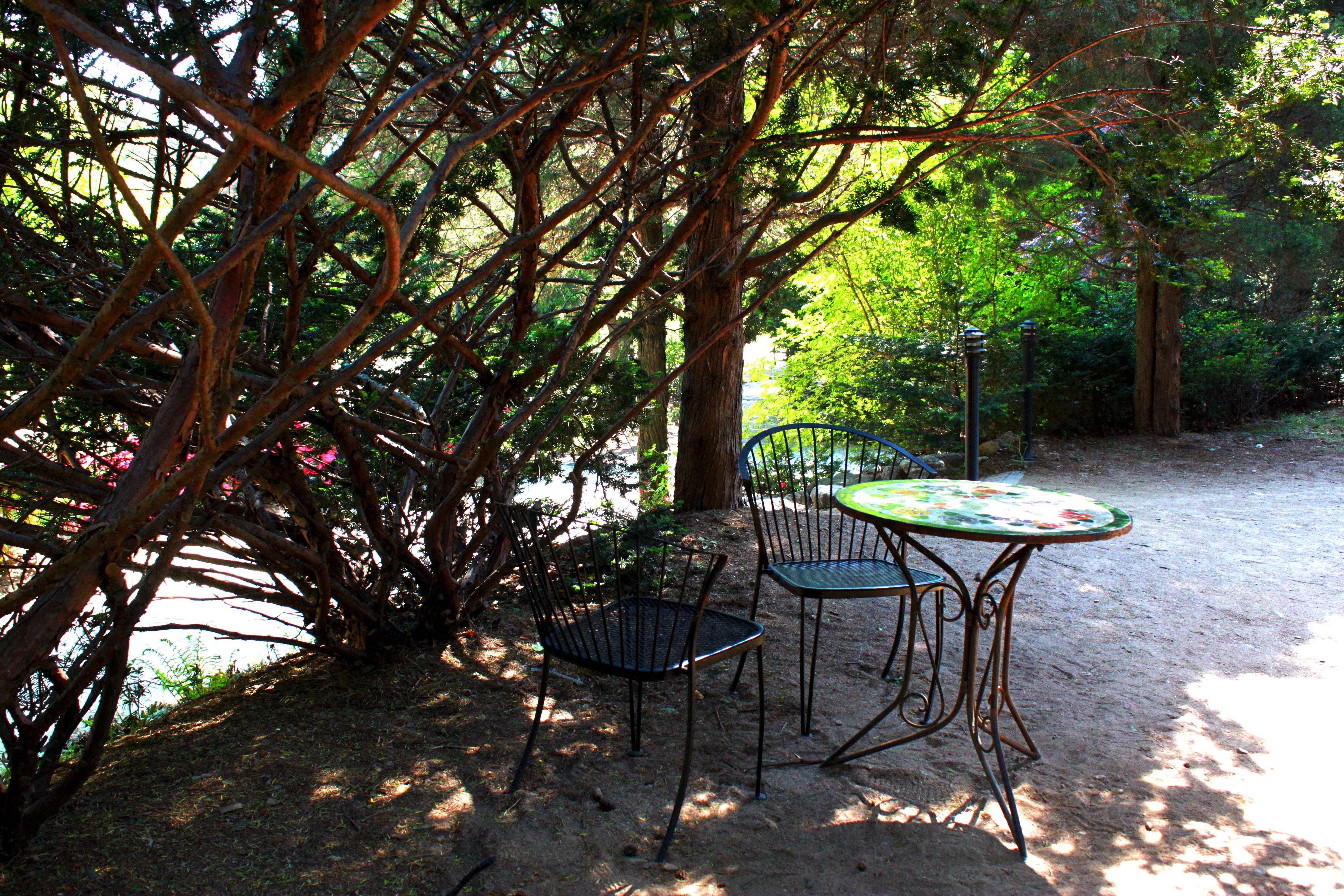 Kostenlose Foto Tabelle Landschaft Baum Natur Draussen