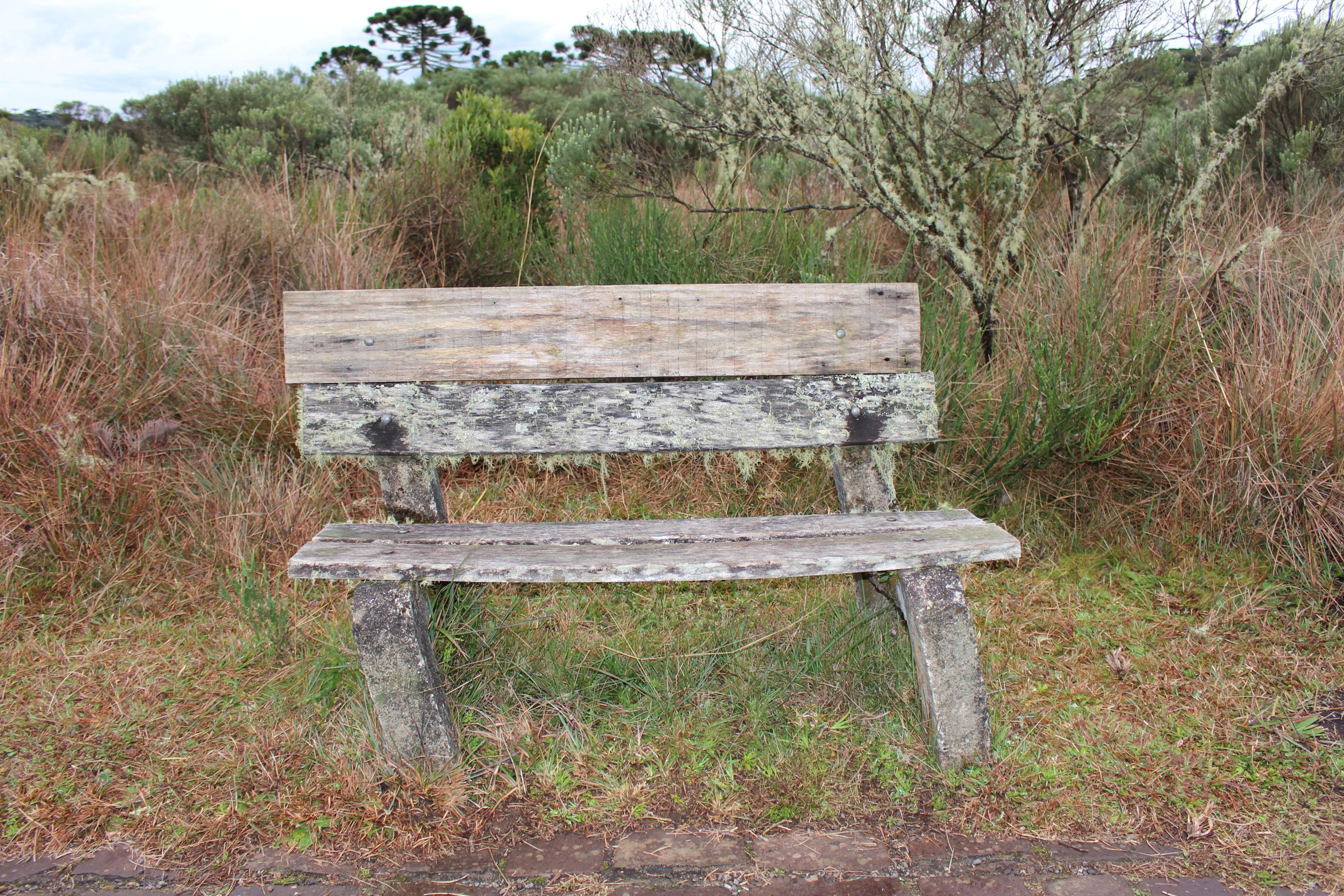 Fotos gratis : mesa, paisaje, madera, banco, campo, mueble ...