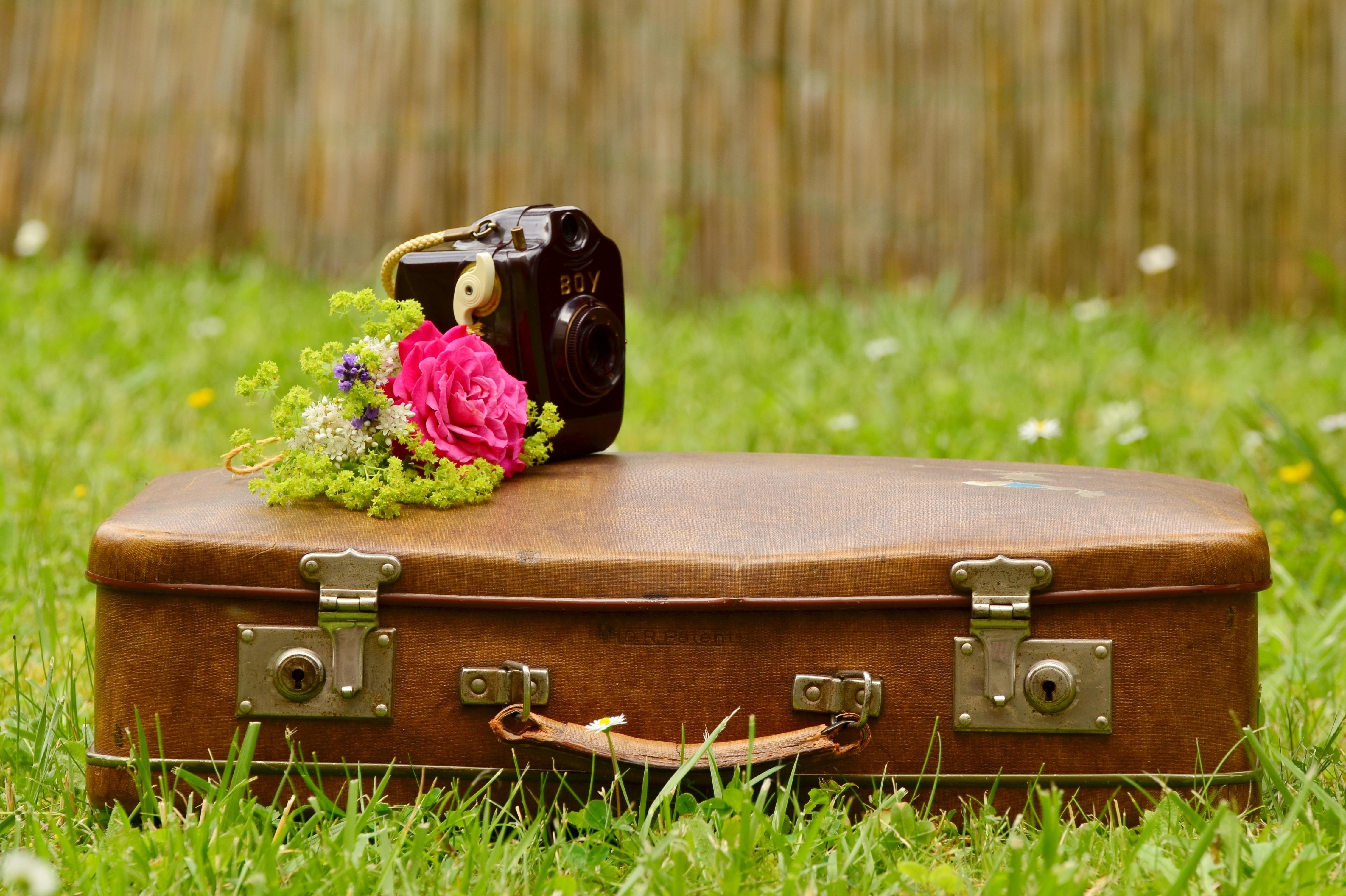 чему картинка уже на чемоданах стиле лофт
