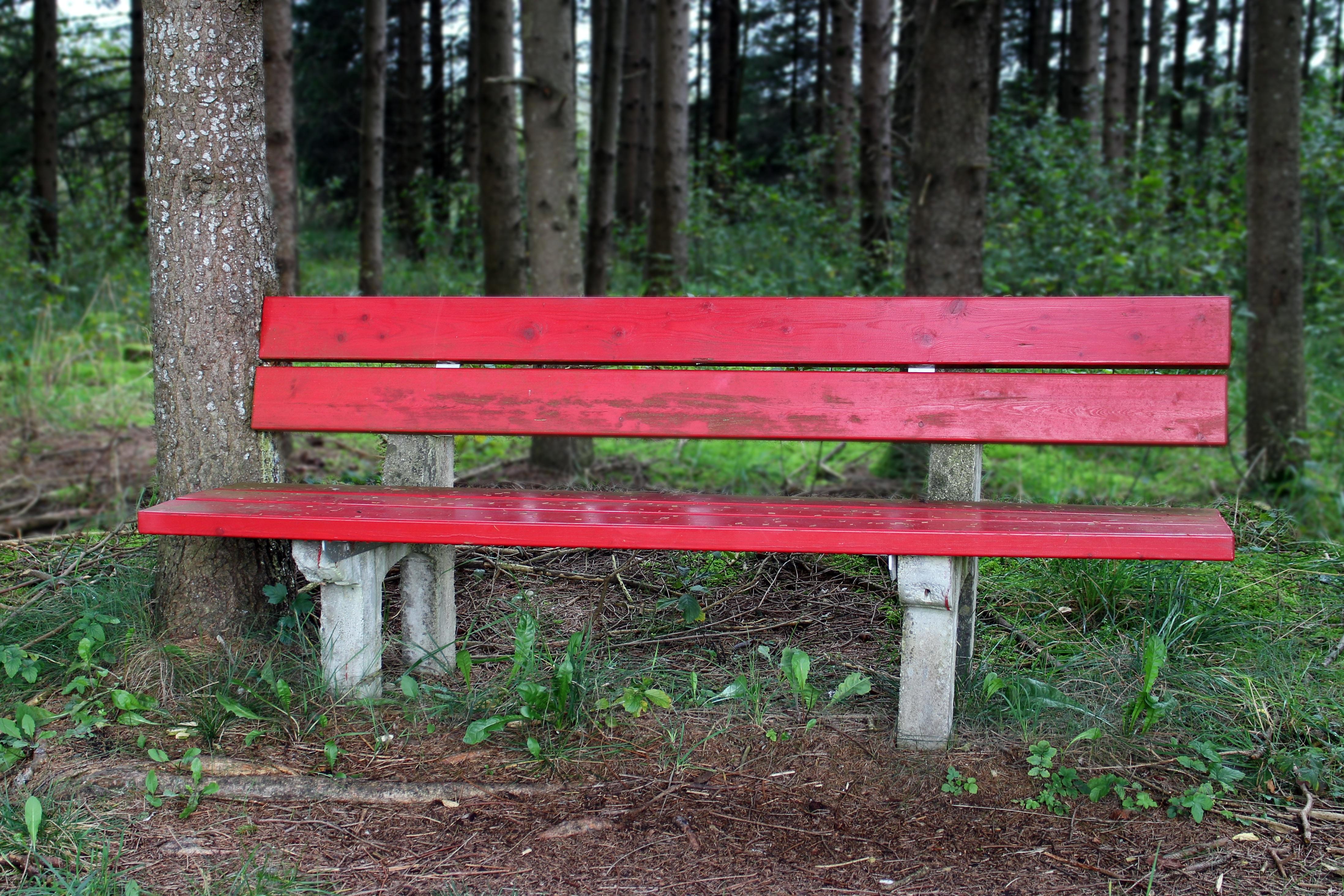 цвет старые скамейки картинки фото чтобы
