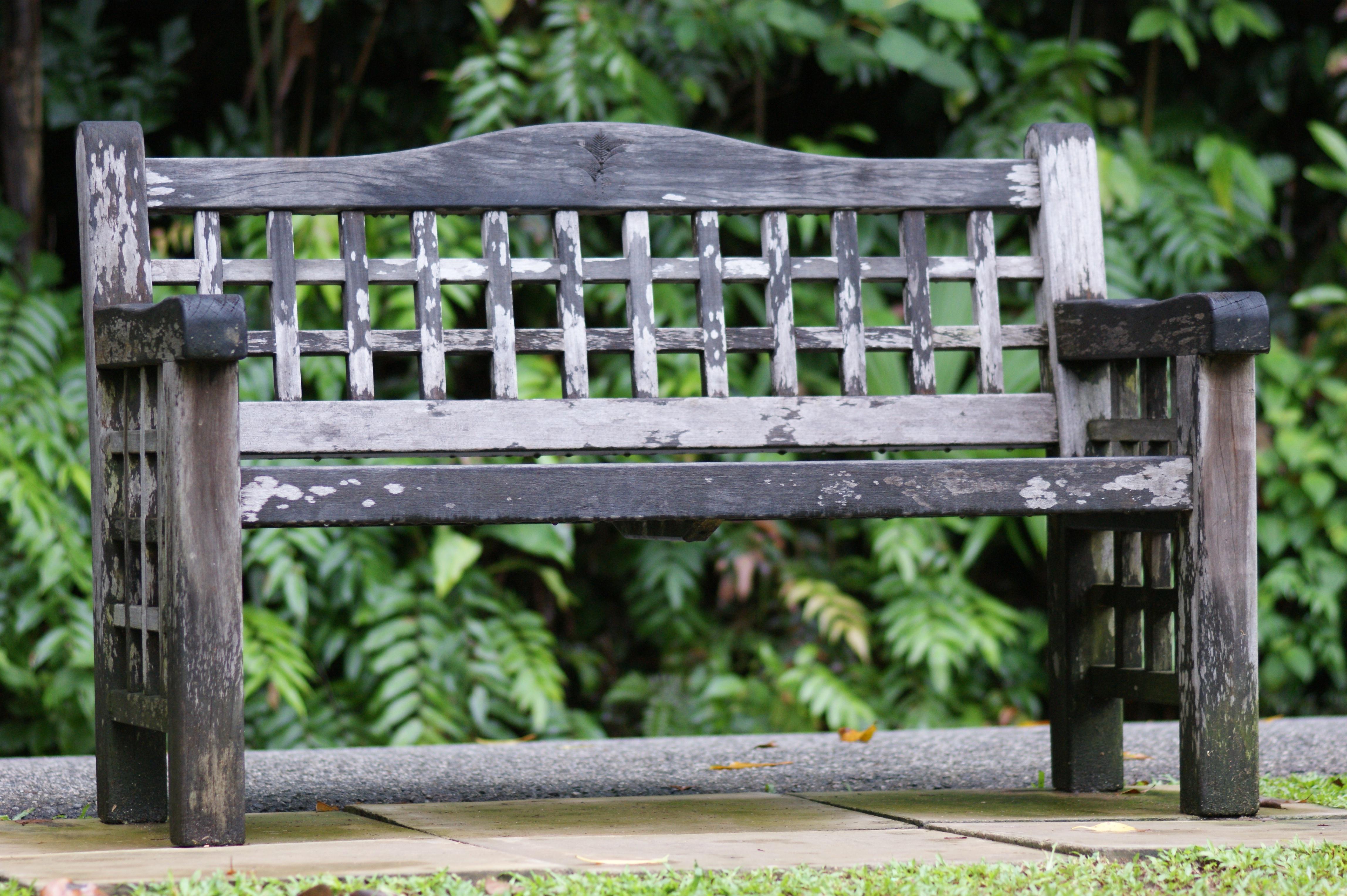 Fotos gratis : mesa, naturaleza, al aire libre, madera, banco, silla ...