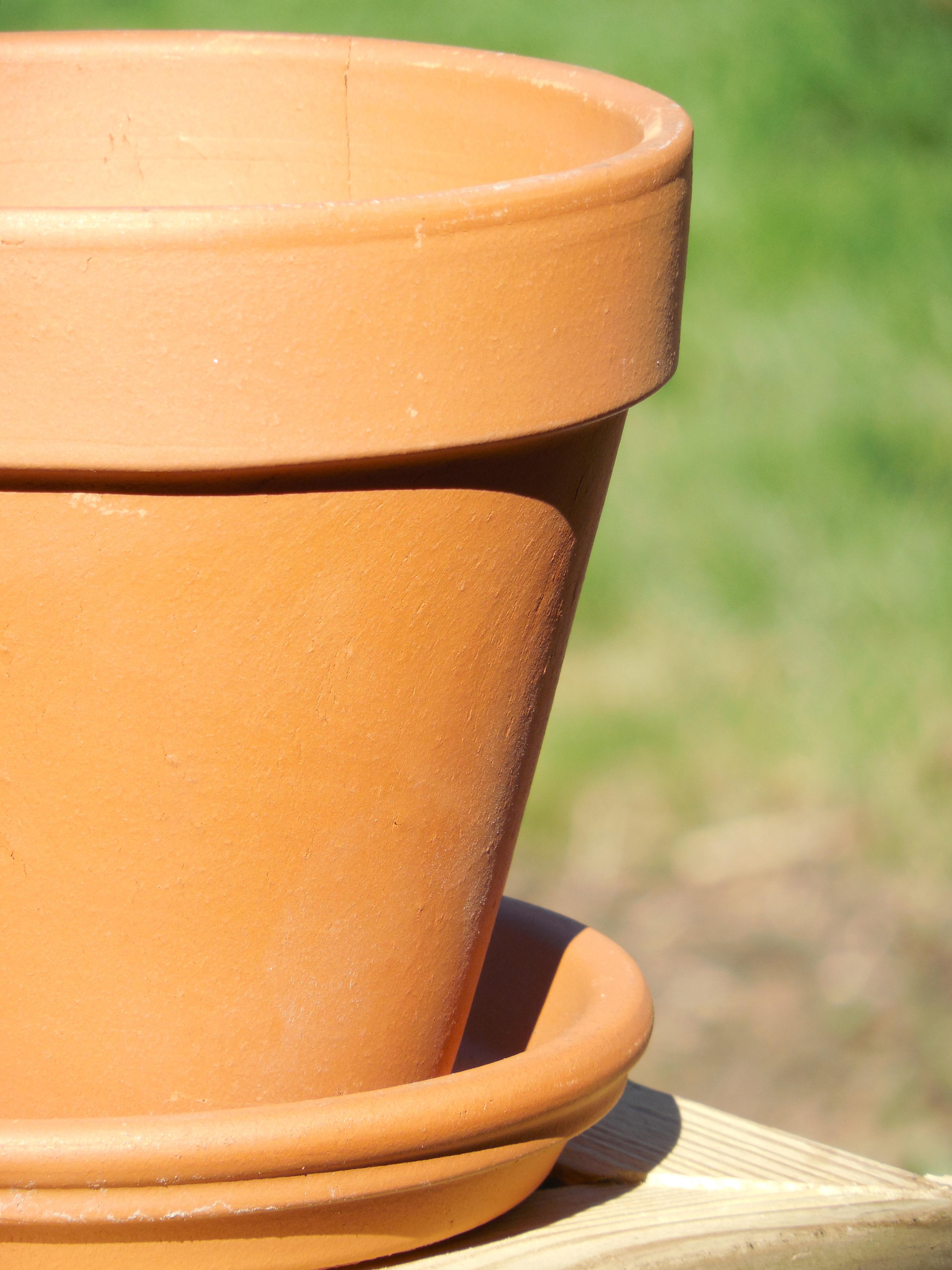 Free Images Table Plant Wood Flower Pot Orange