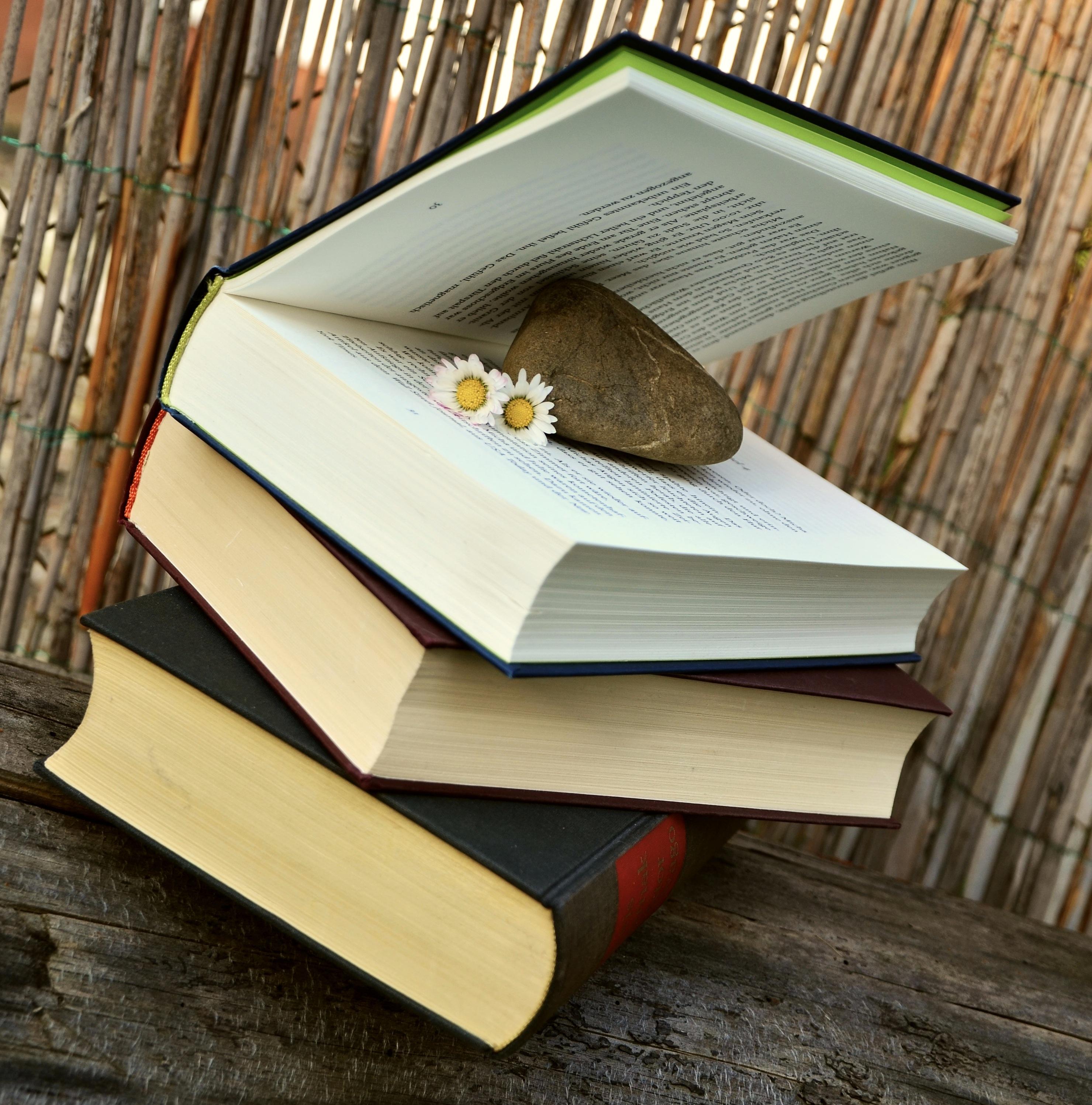 Tabelle Lesen öffnen Flügel Holz Entspannen Sie Sich Möbel Literatur Studie  Entwurf Bücher Buchseiten