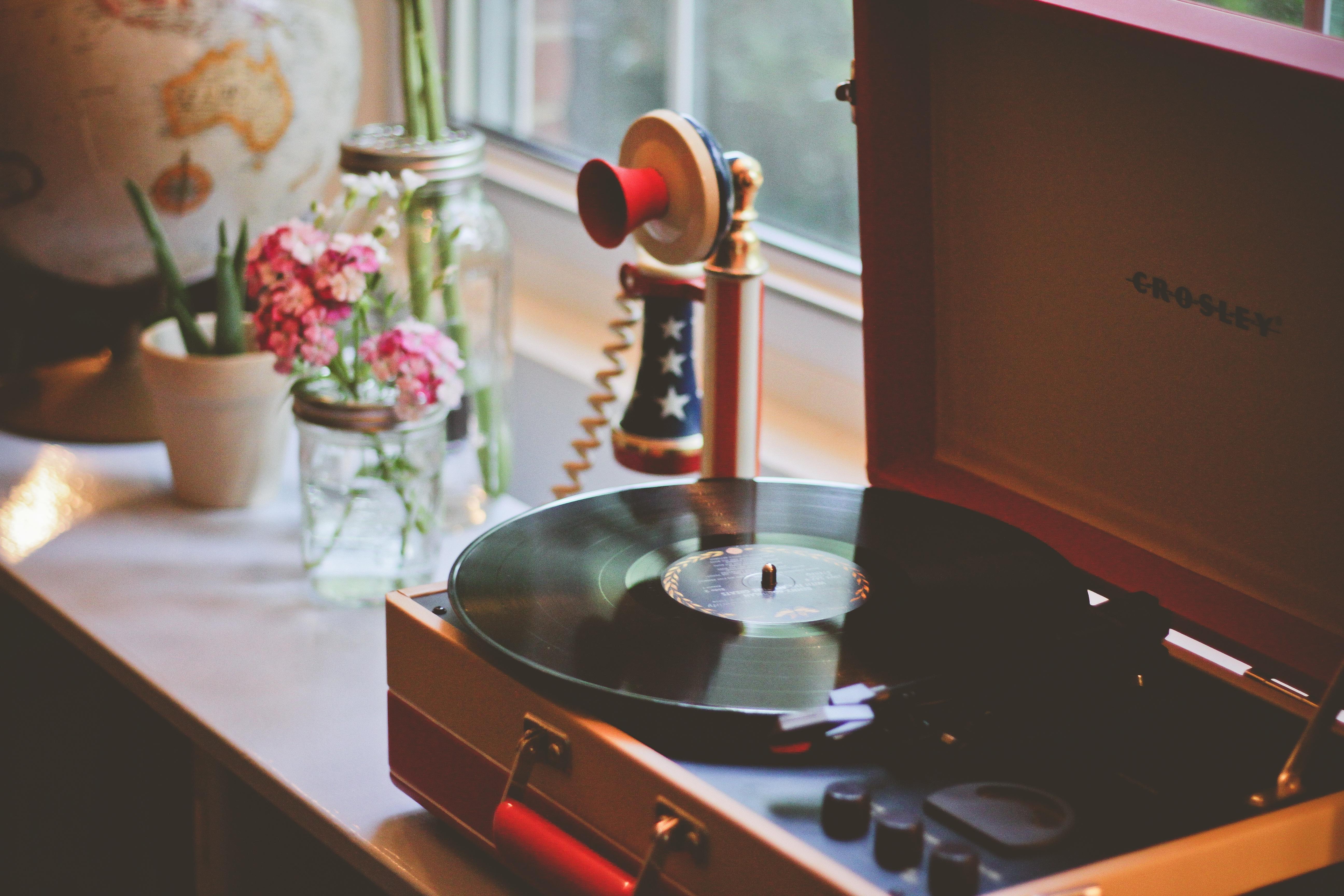 Fotos gratis : mesa, grabar, flor, cocina, mueble, habitación ...