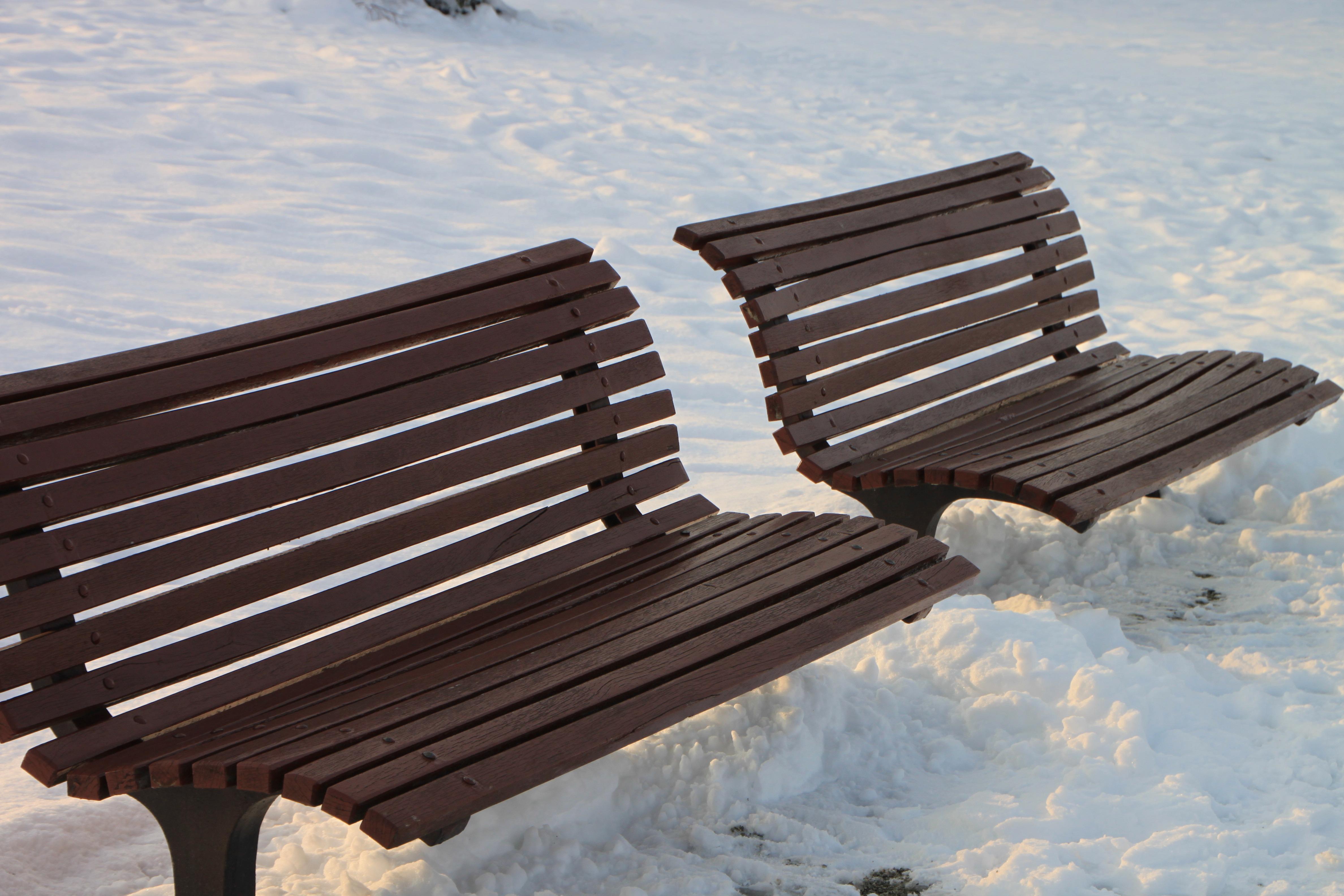 무료 이미지 : 표, 눈, 감기, 겨울, 목재, 벤치, 의자, 편하게 하다 ...