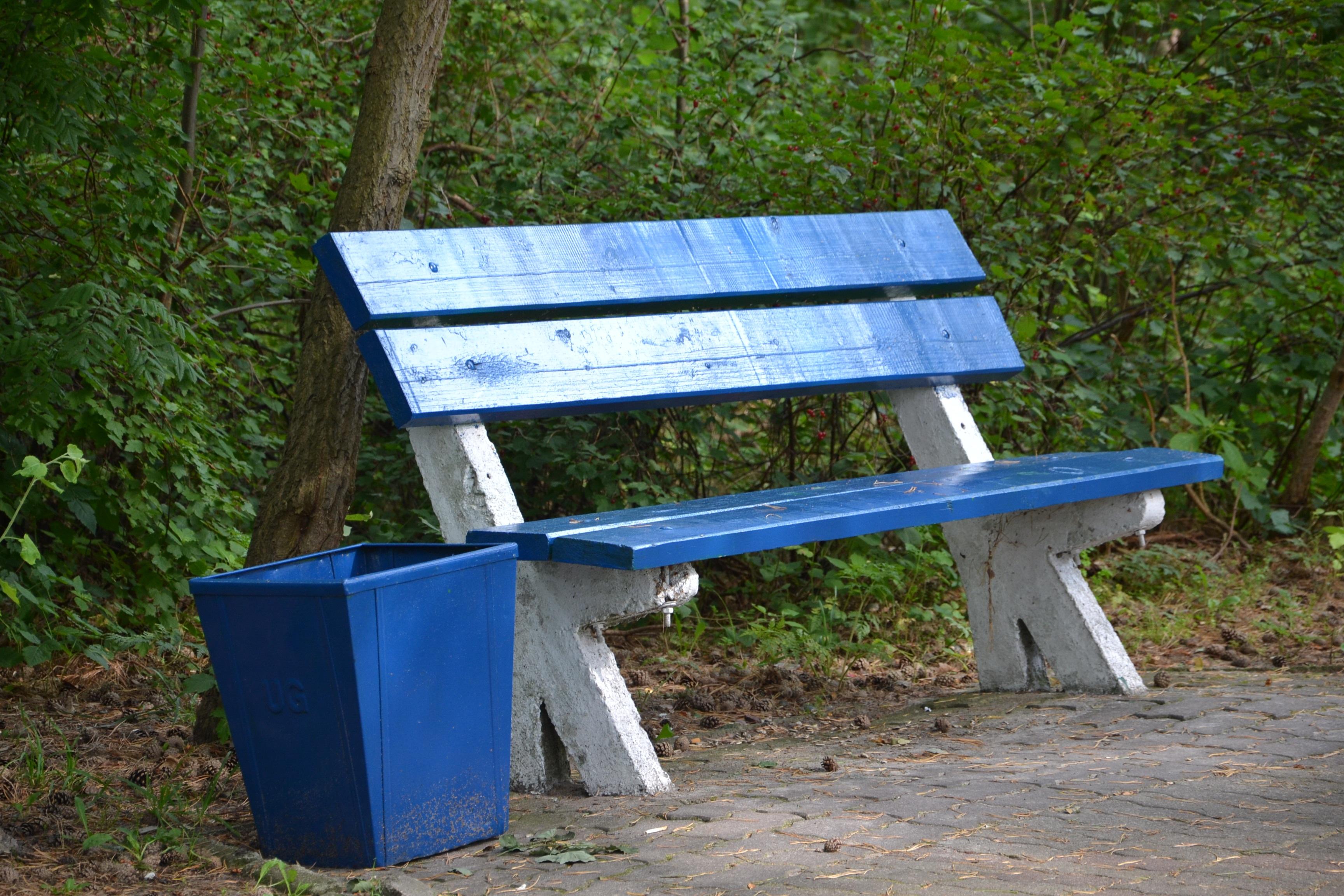 Fotos gratis : mesa, árbol, banco, parque, azul, descanso, mueble ...