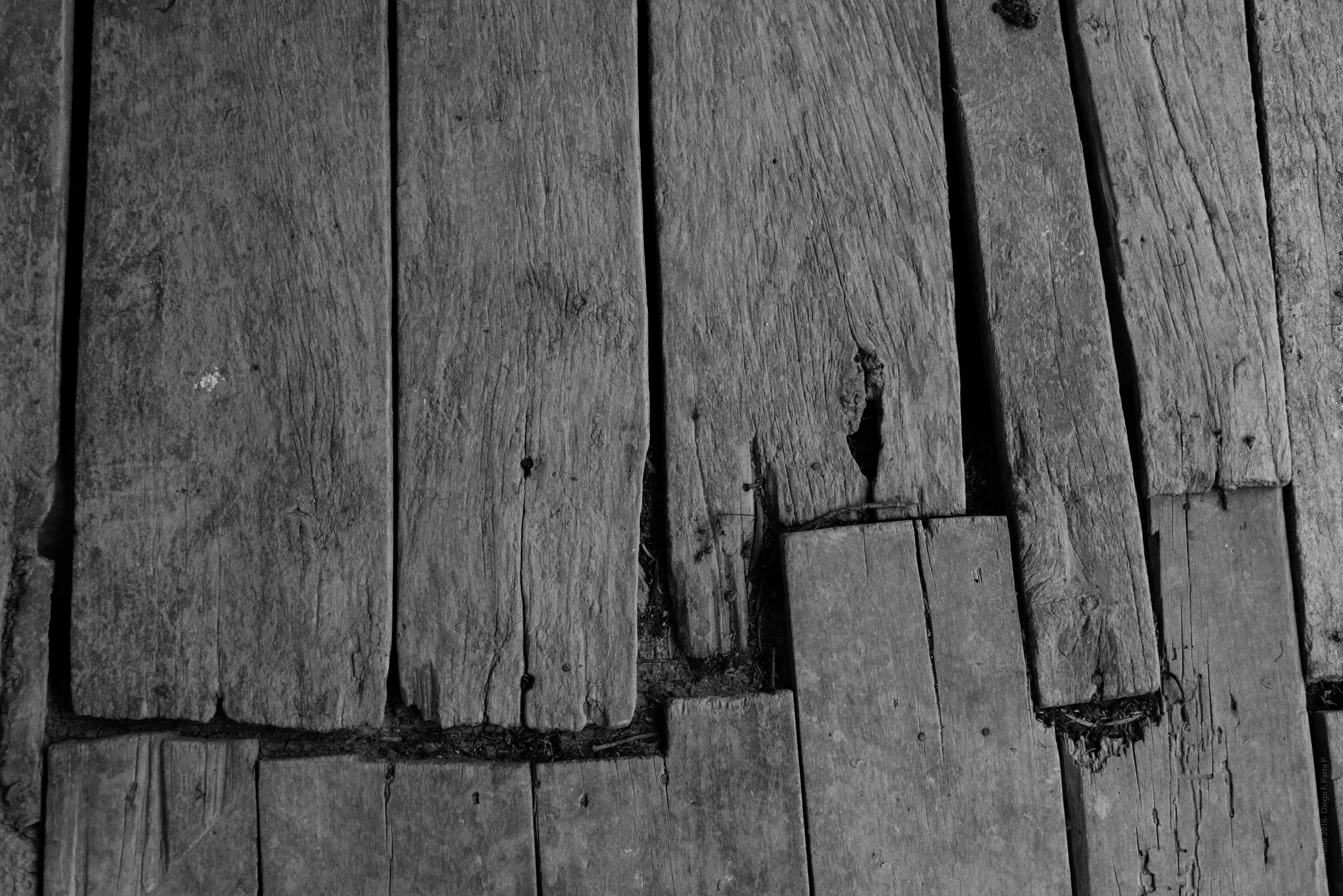 La Plinthe Du Mur images gratuites : table, arbre, branche, noir et blanc
