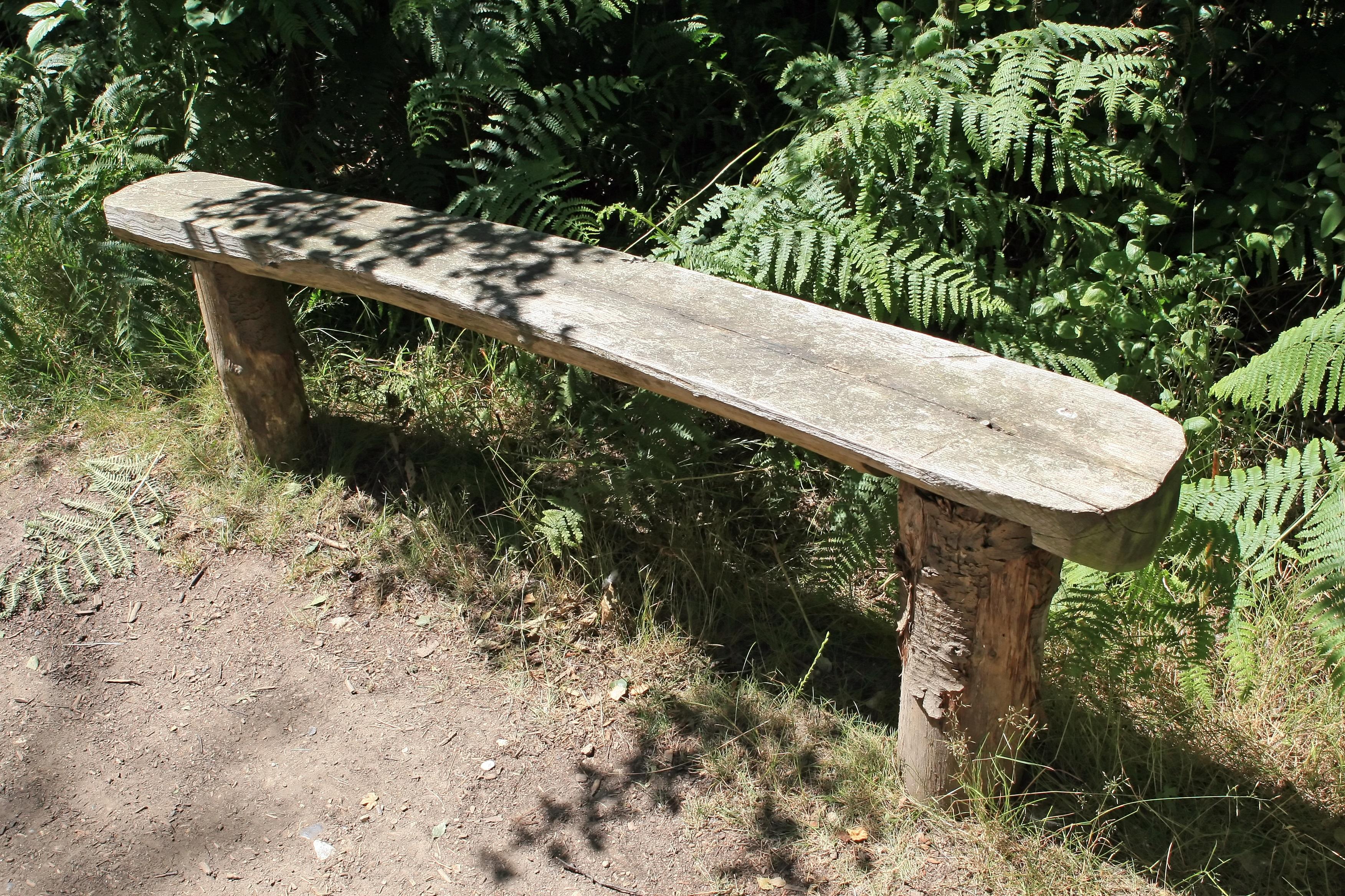 Fotos gratis : mesa, árbol, bosque, camino, pista, sendero, banco ...