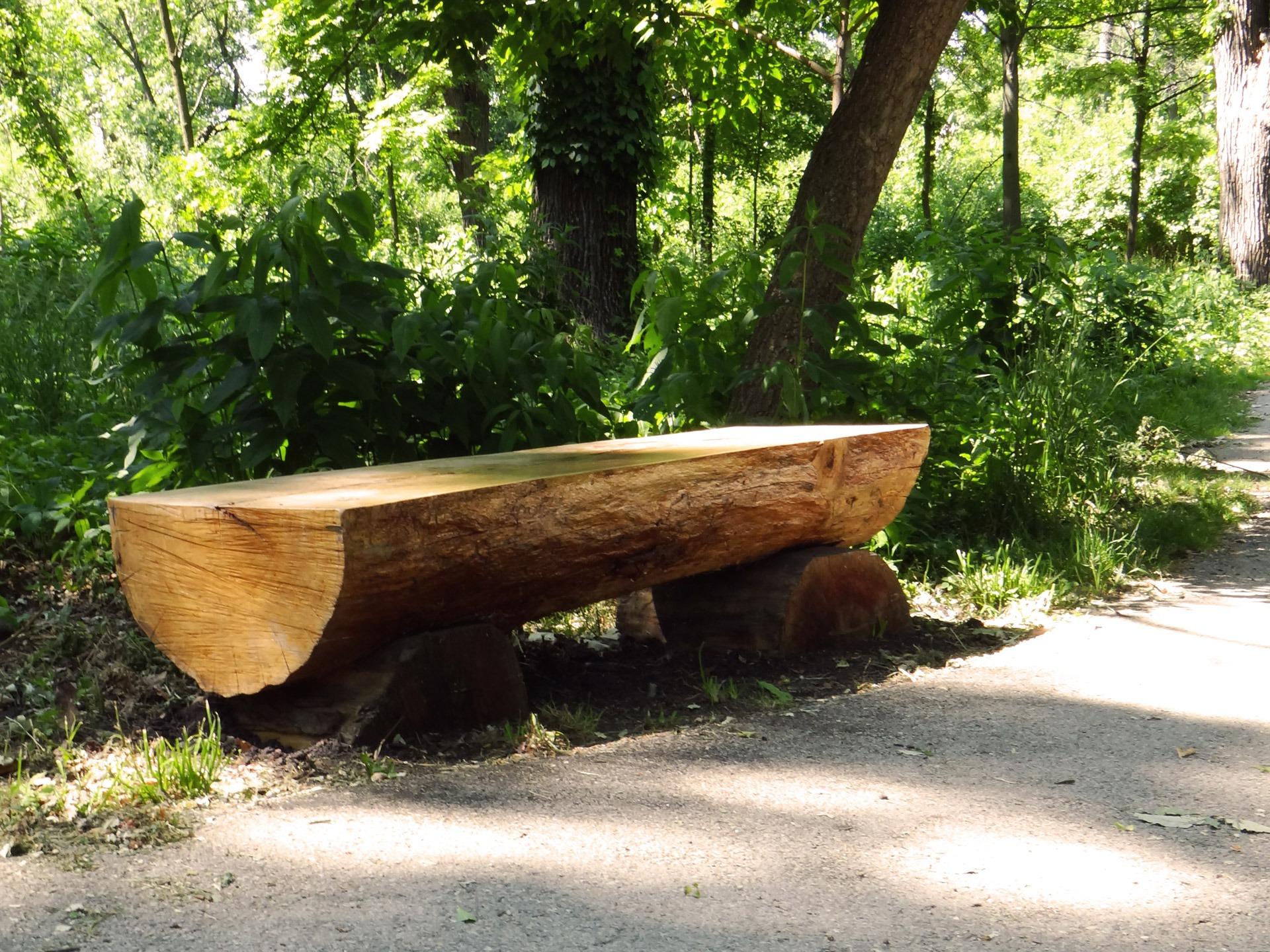 Images Gratuites  table, arbre, la nature, chemin, de plein air, Piste, bate