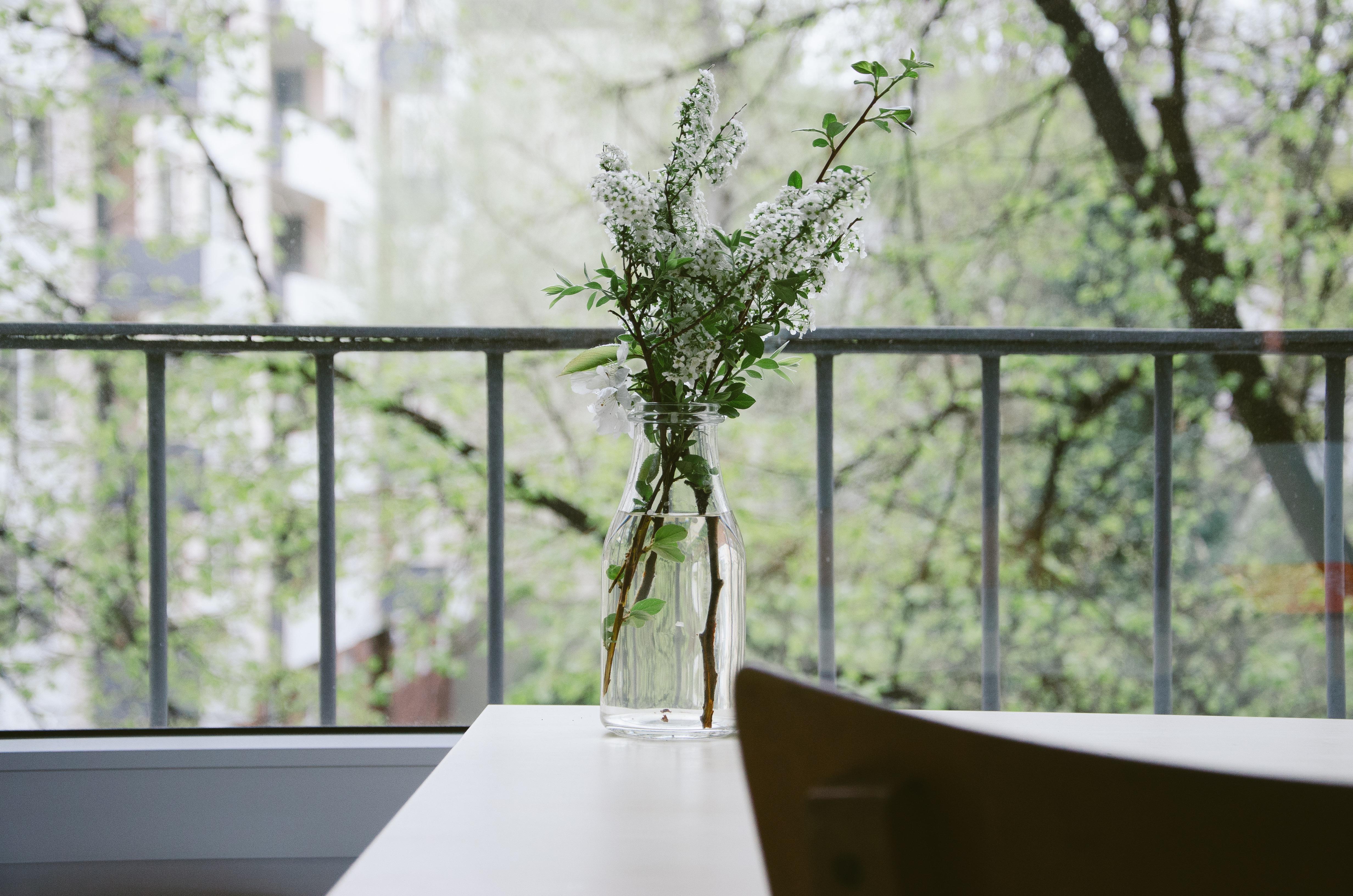 ... rumah batang daun bunga berkembang kaca Perkotaan Bunga balkon susuran tangga musim semi hijau herba alam botani pertanian desain ... & Gambar : meja air cabang mekar menanam rumah batang daun ...