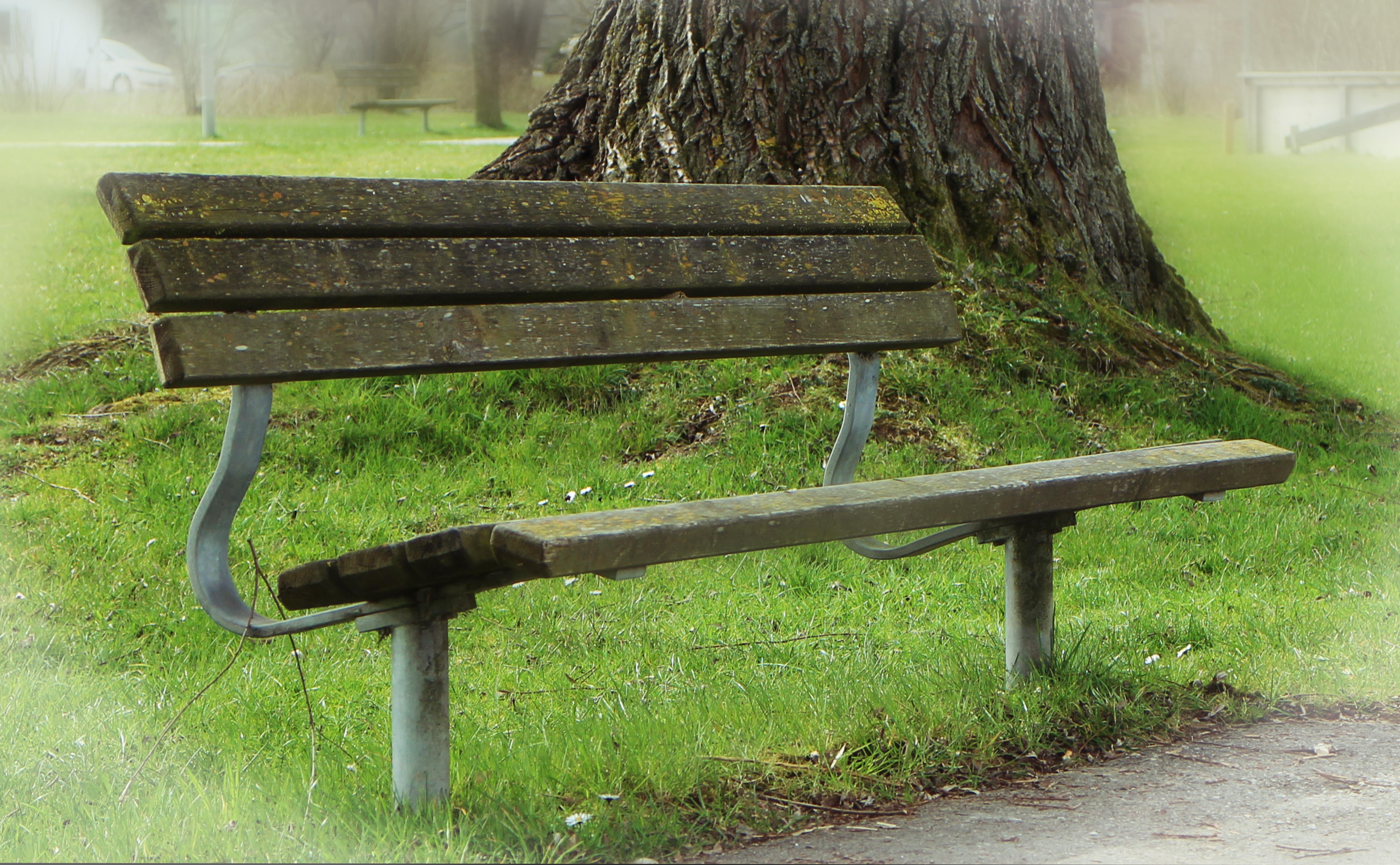Fotos gratis : mesa, madera, banco, silla, asiento, verde, descanso ...