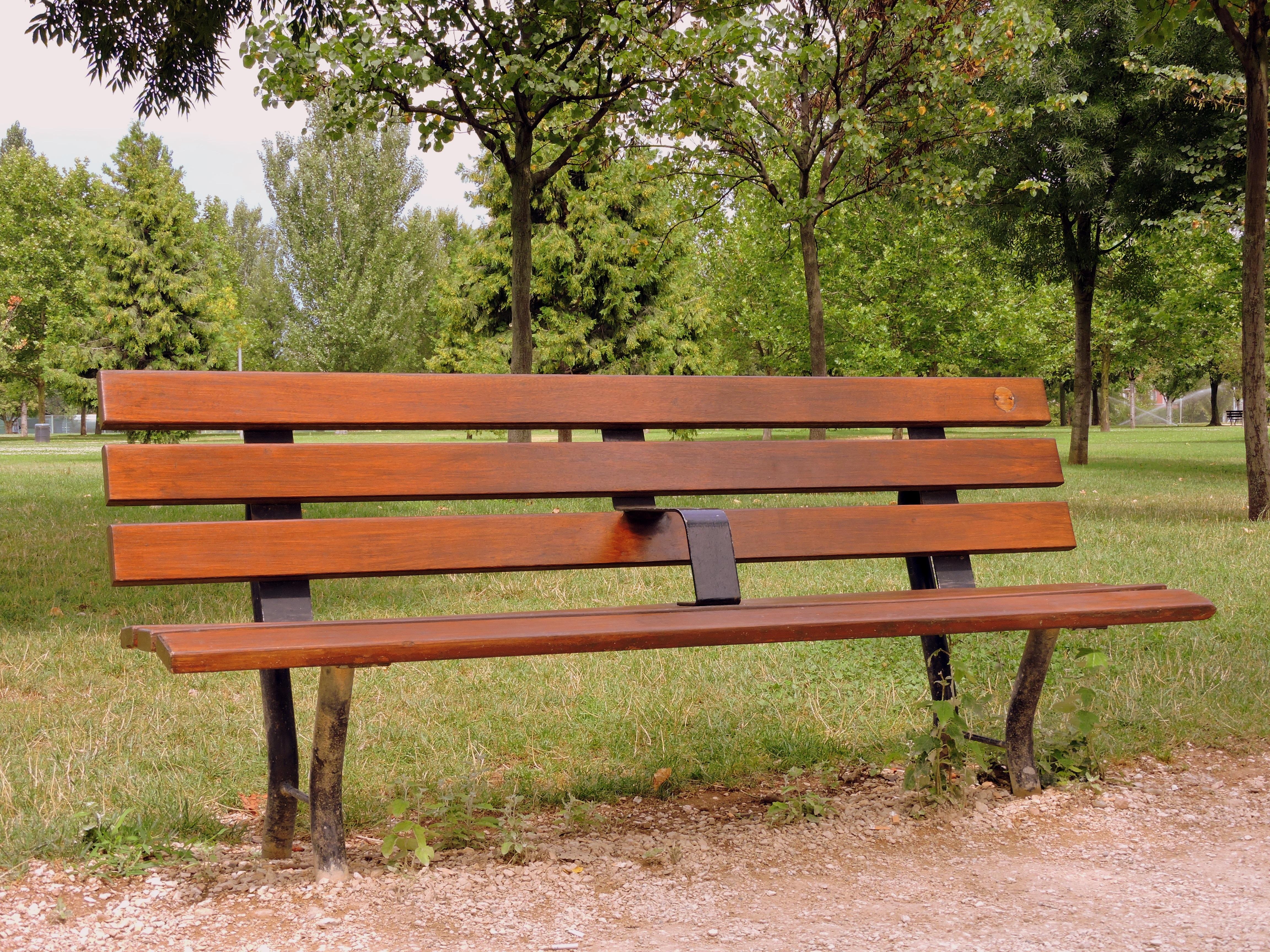 Fotos gratis : mesa, madera, banco, soledad, verde, parque, jardín ...