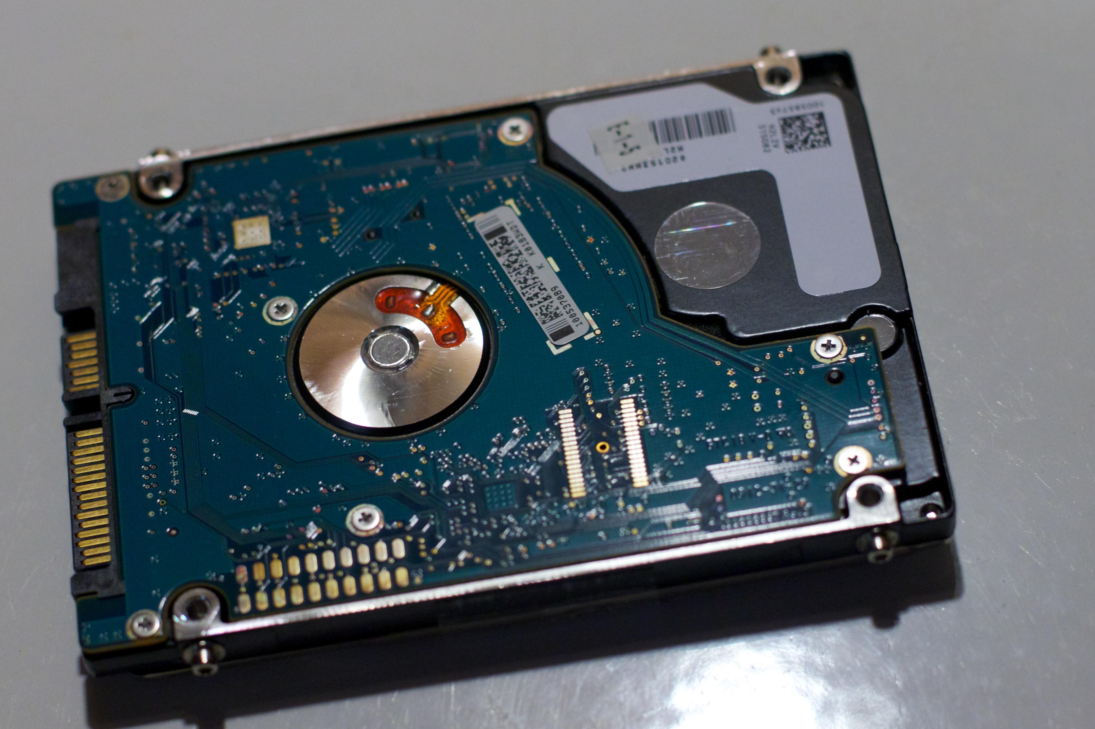Videokortti
