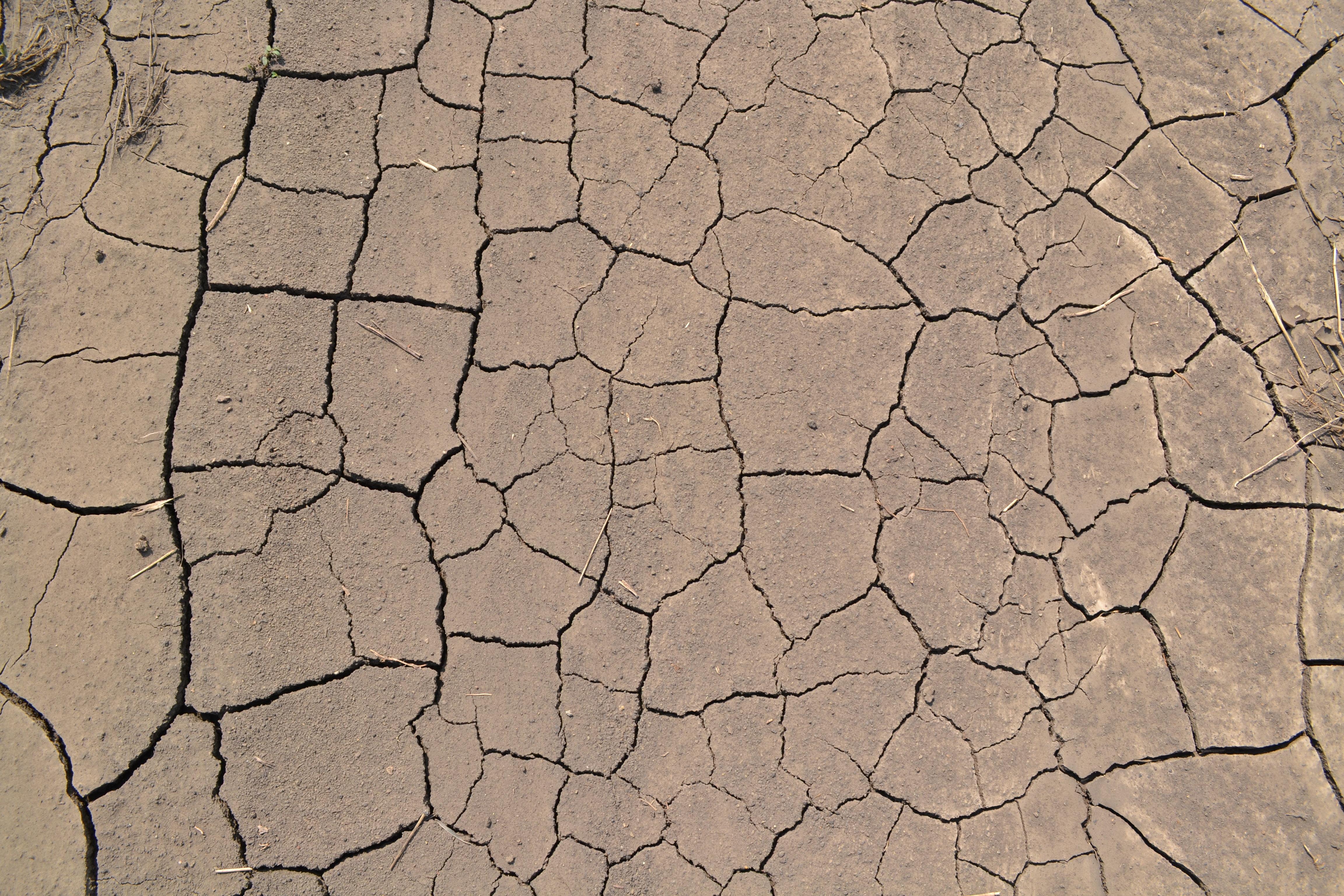 Fotos gratis textura desierto piso guijarro tierra for Nivelar piso de tierra