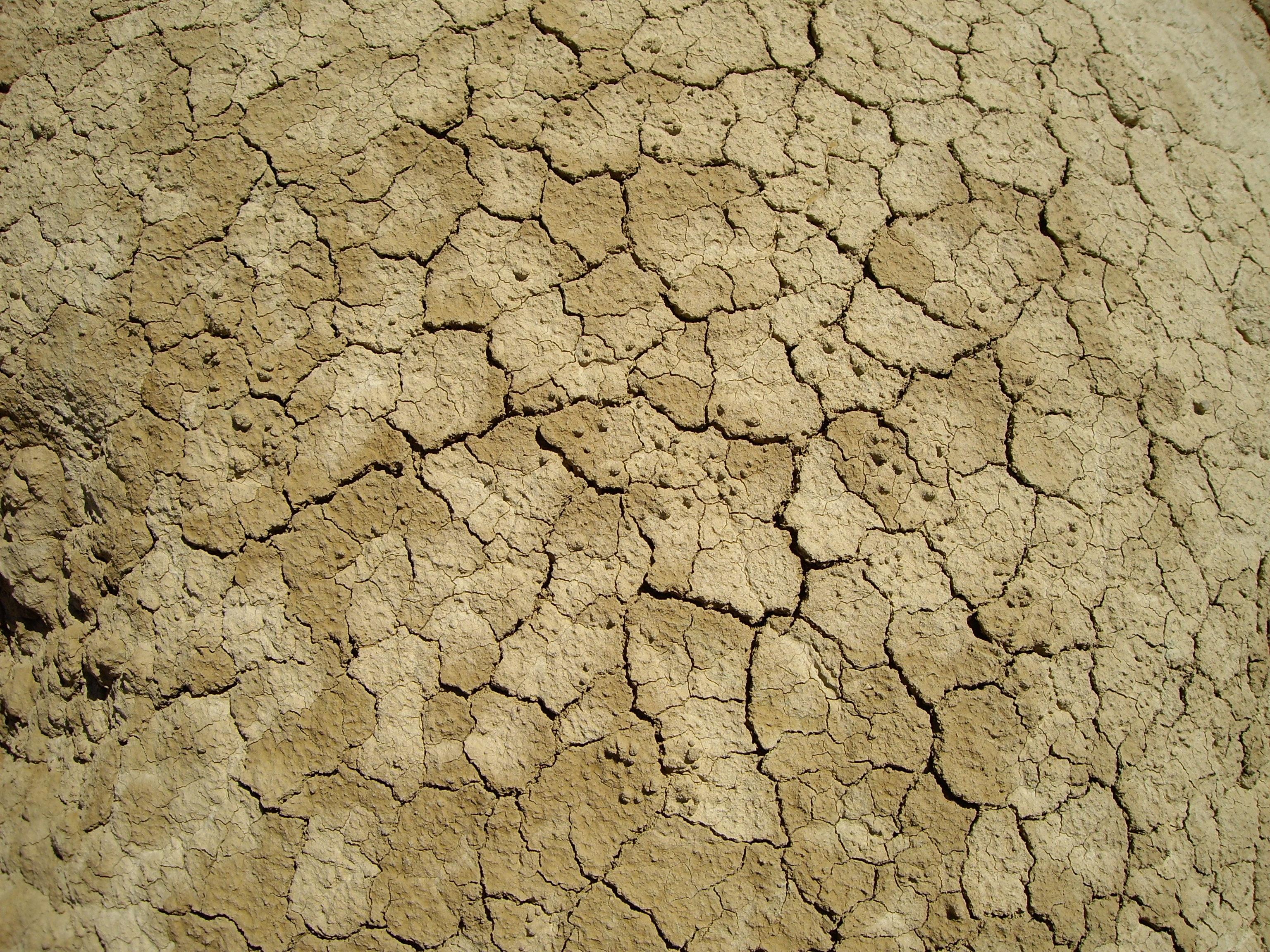 fotos gratis textura desierto piso pared asfalto