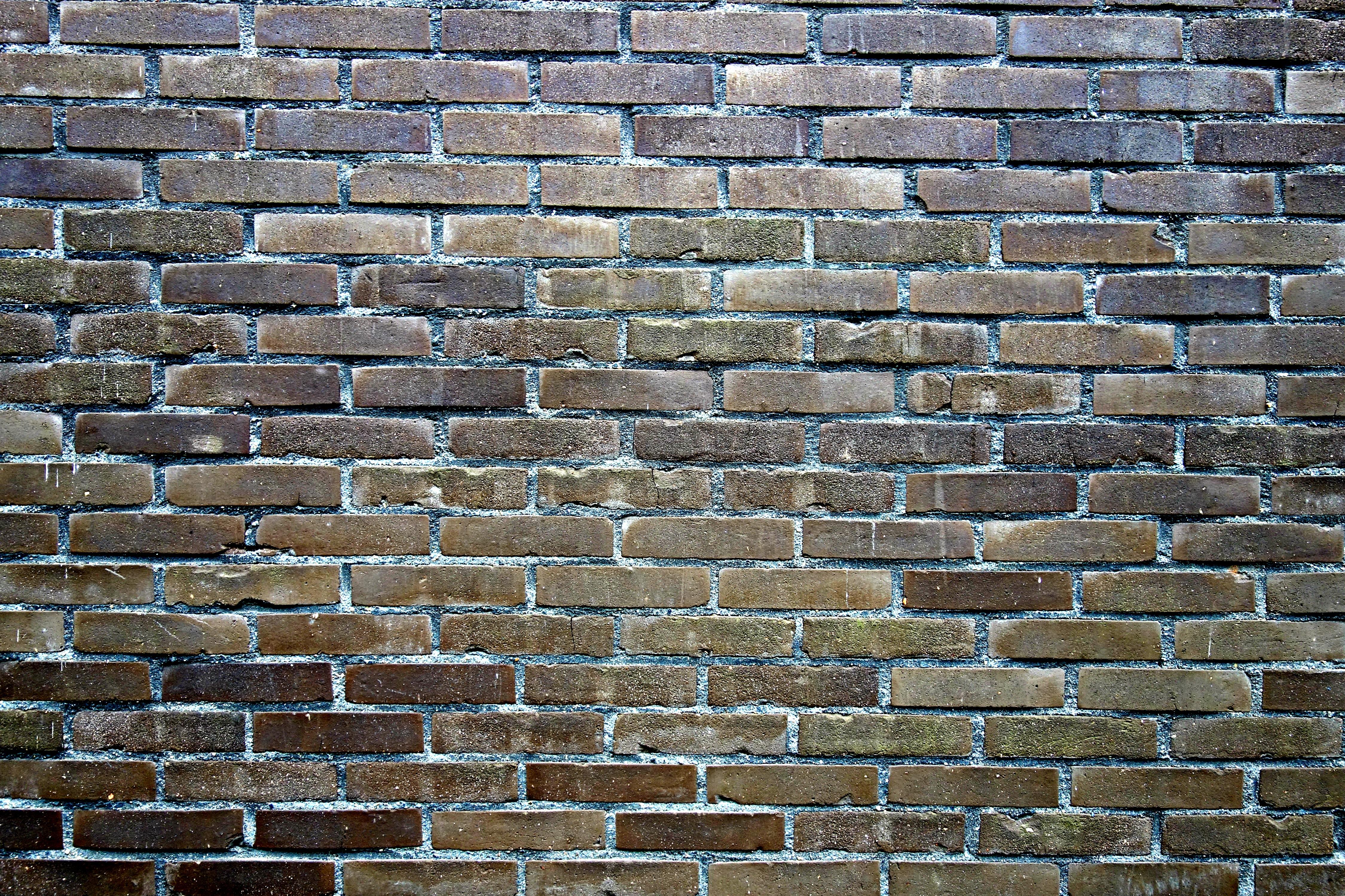 Brick wall construction floors doors interior design for Wall surface texture