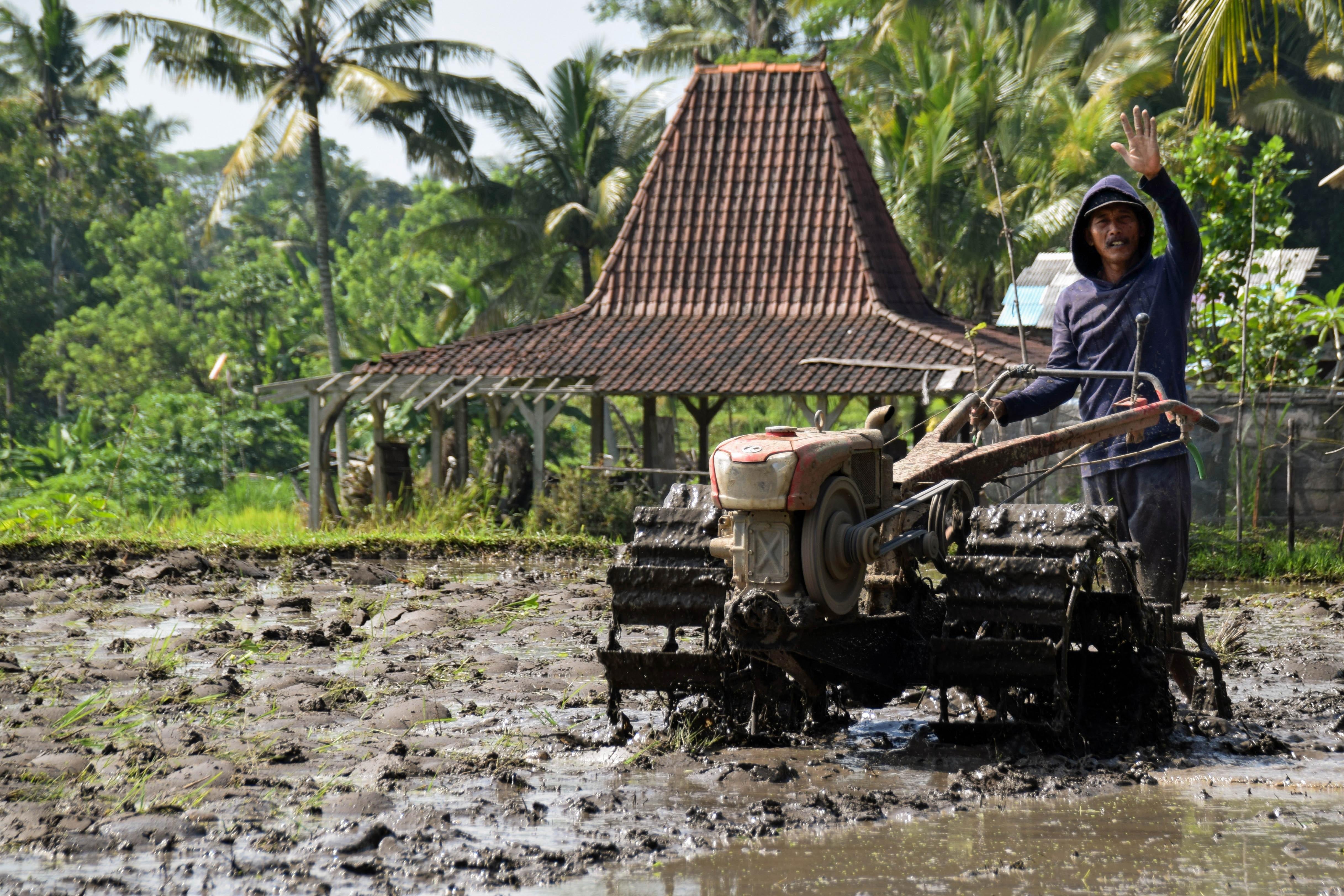 Gambar Jalur Tanah Pertanian Kendaraan Nasi Indonesia Bajak