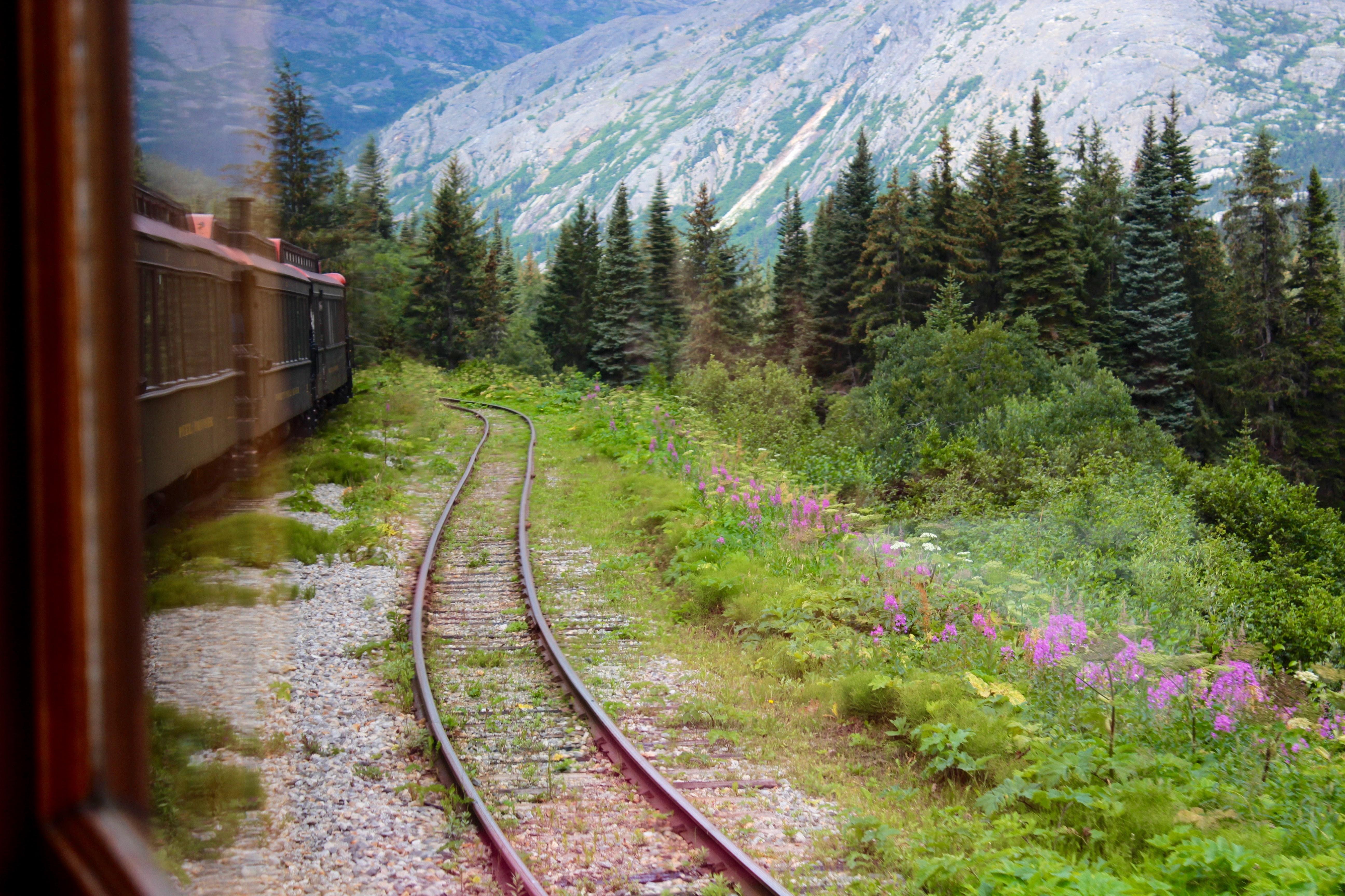 поезд весной в картинках для душевой