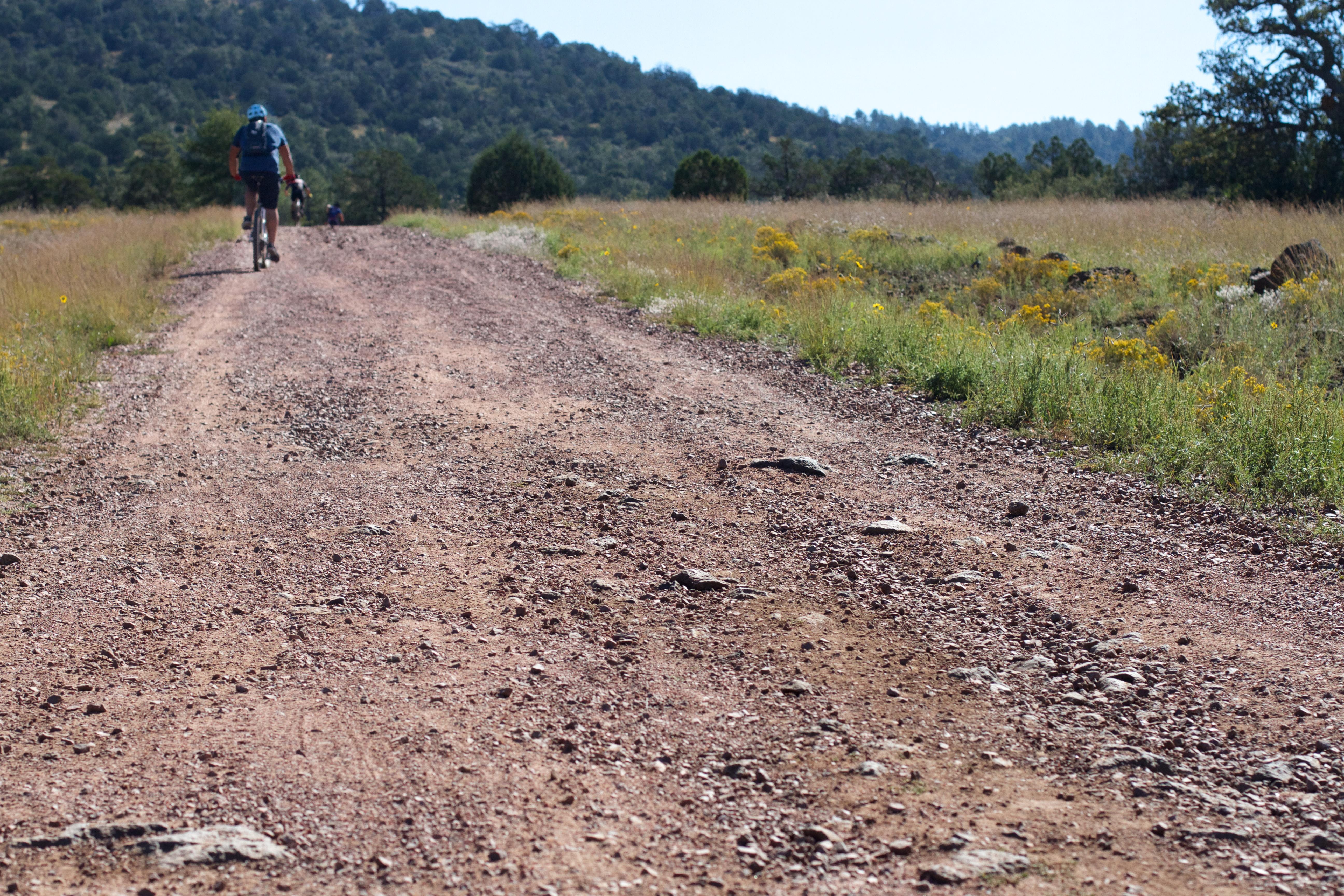 Fotos Gratis Pista La Carretera Sendero Campo