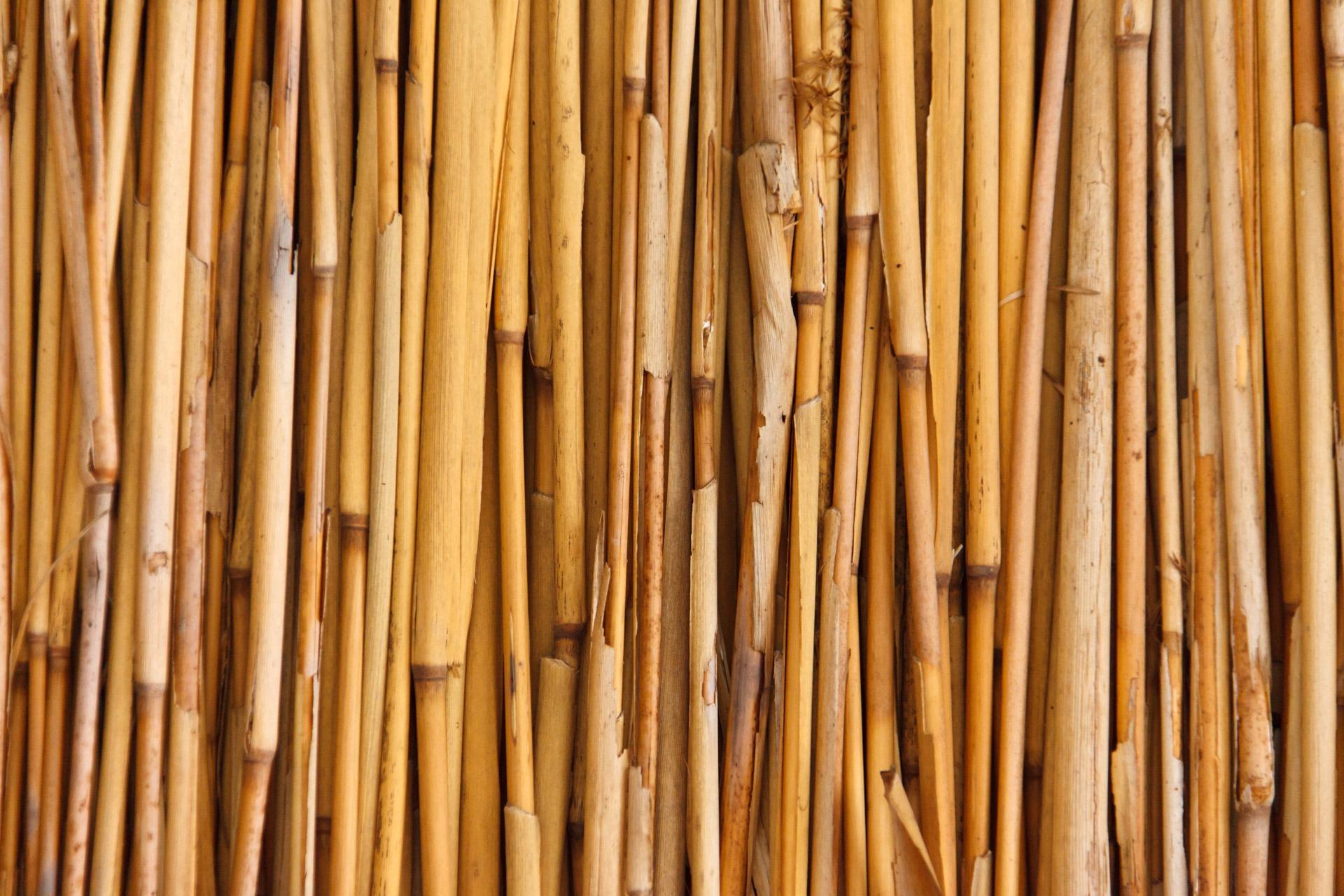 Asian gold bamboo blinds asian gold