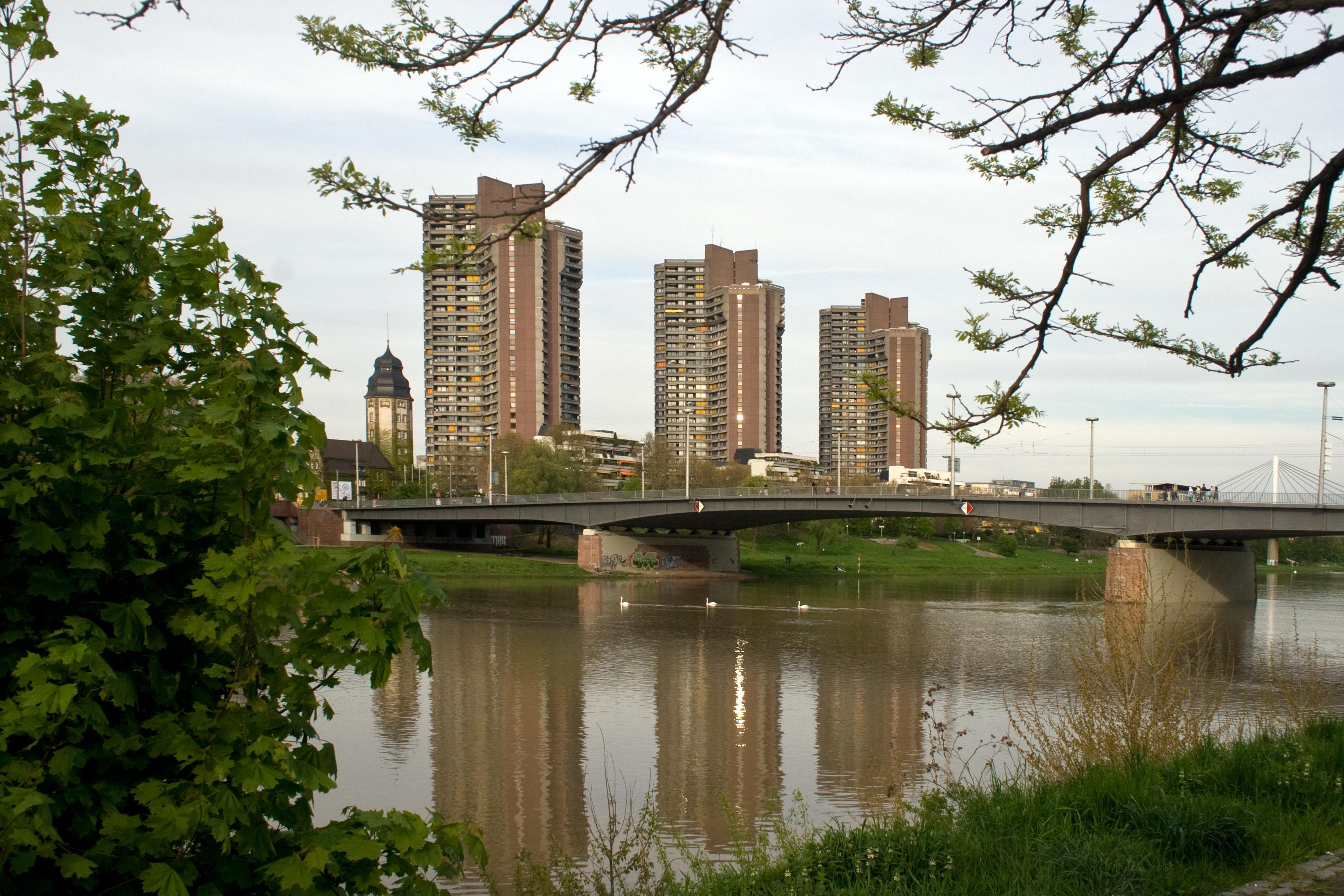 Kostenlose foto baum die architektur br cke skyline - Architektur mannheim ...