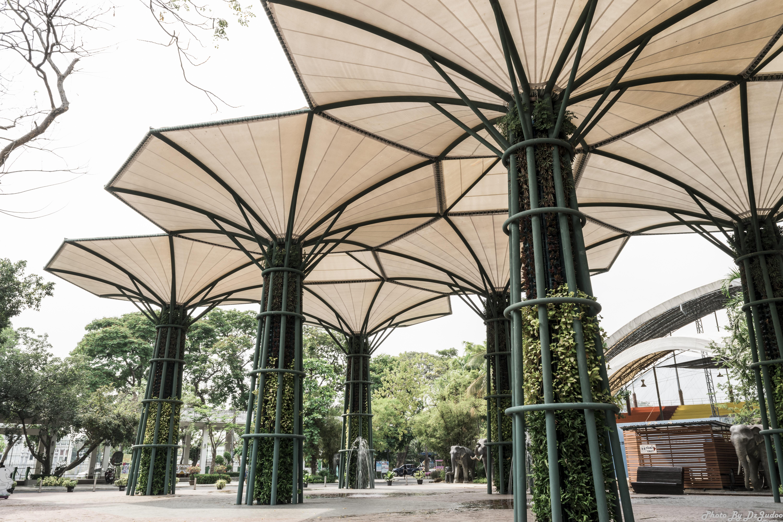 Fotos gratis rbol arquitectura casa arco fachada for Arco decorativo jardin