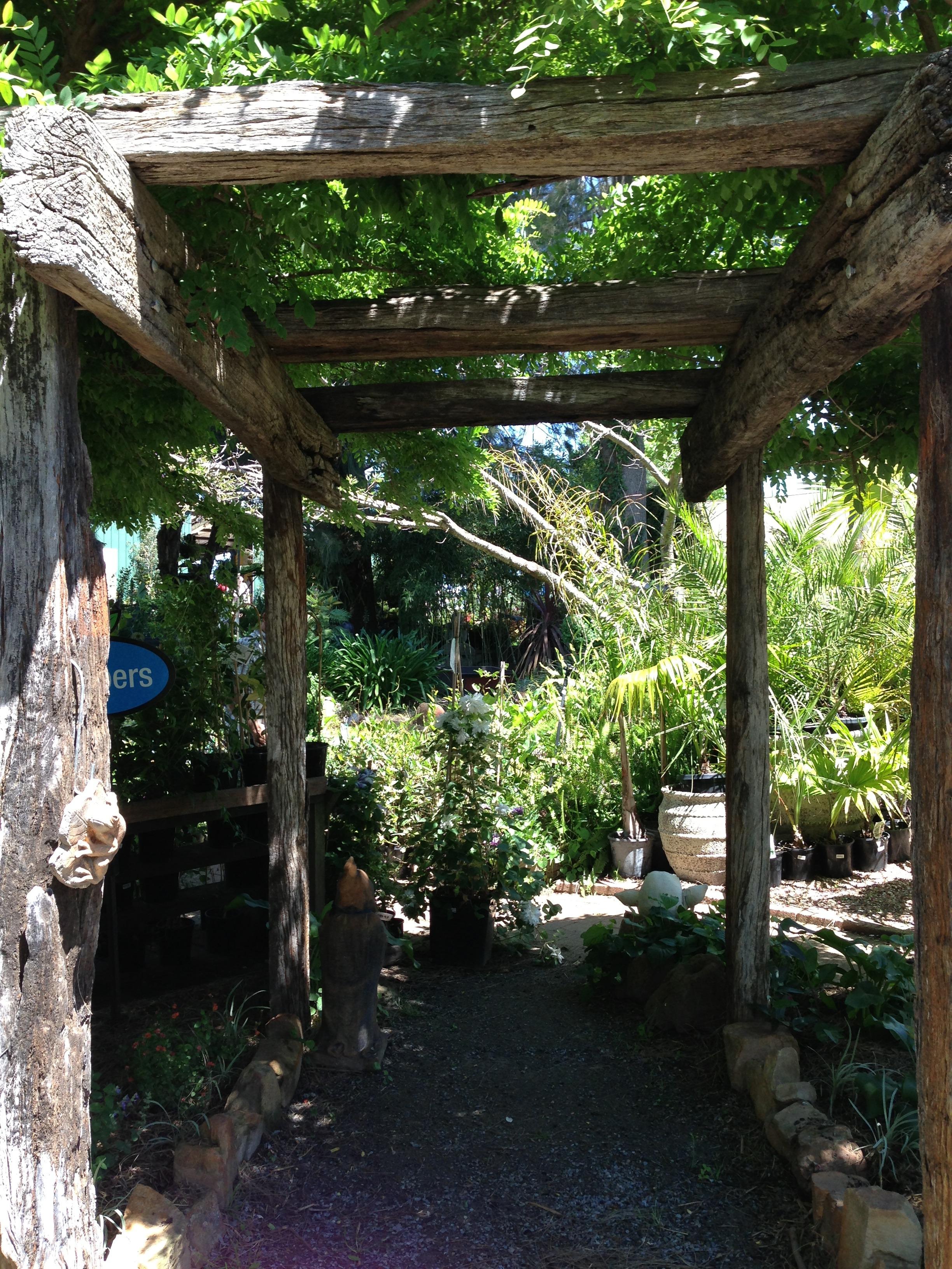 free images tree architecture plant flower jungle cottage