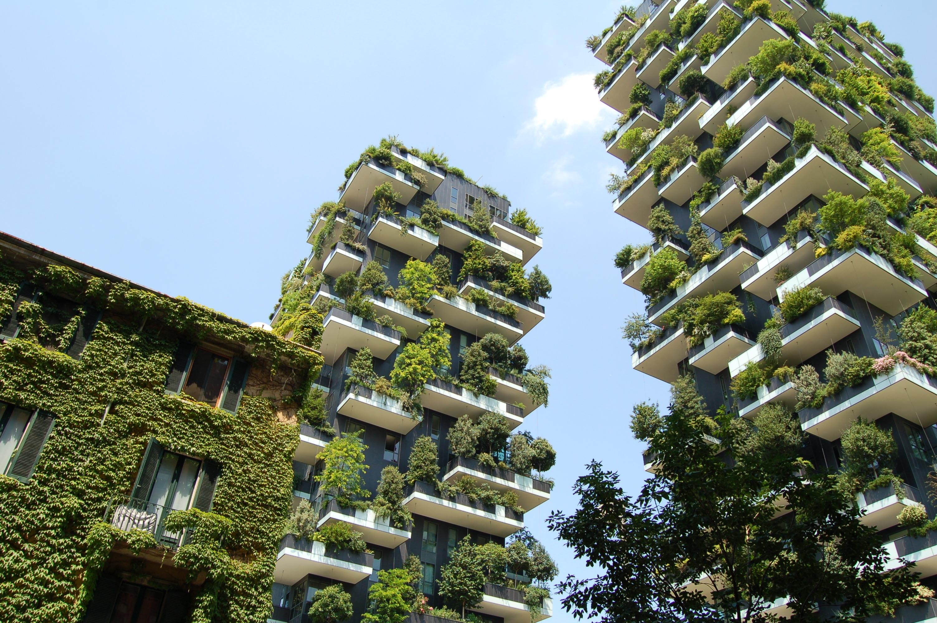 Images Gratuites : arbre, architecture, plante, Manoir, bâtiment ...