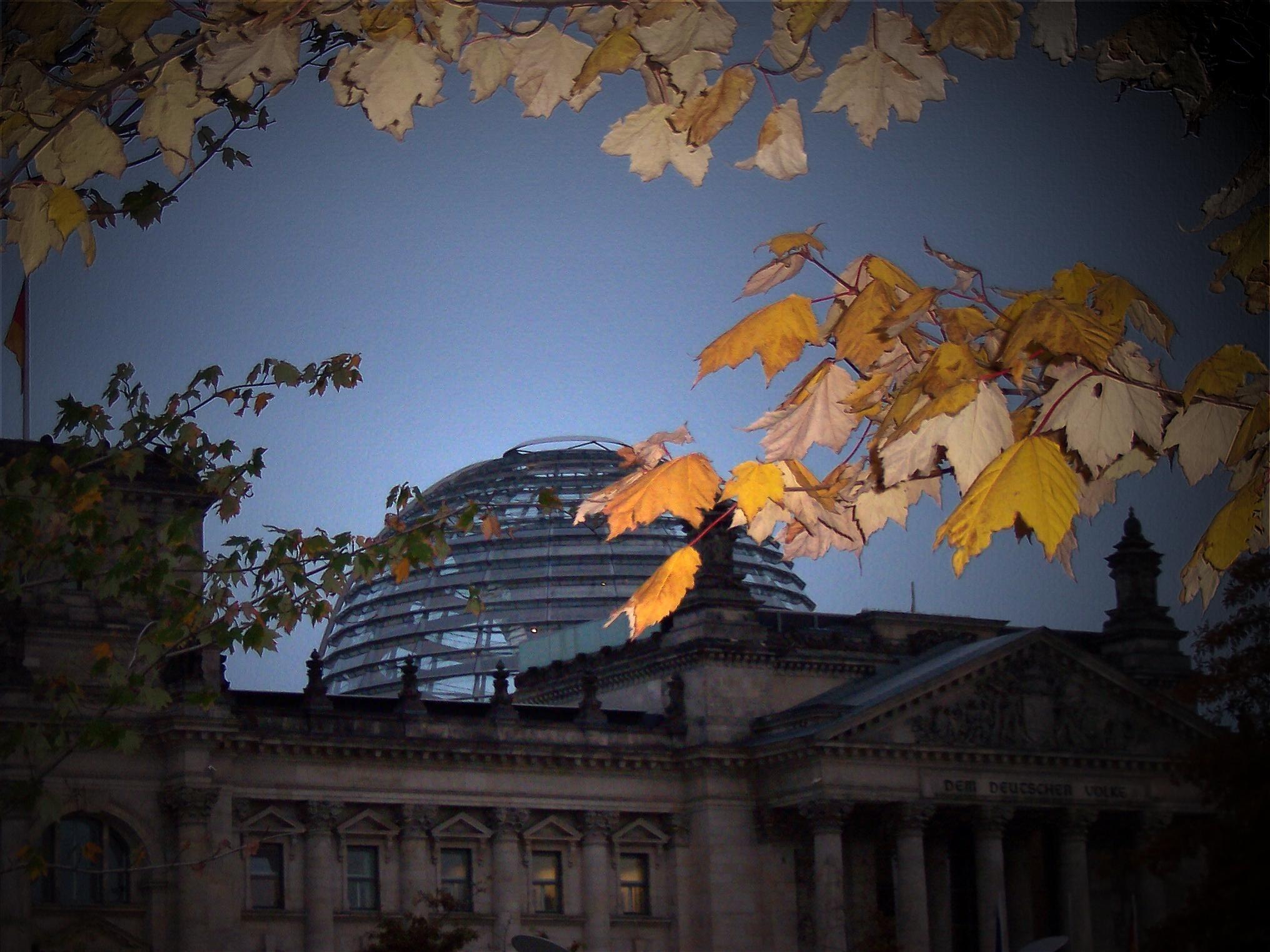 Kostenlose Foto Die Architektur Fenster Glas Gebäude: Kostenlose Foto : Baum, Die Architektur, Himmel, Blatt
