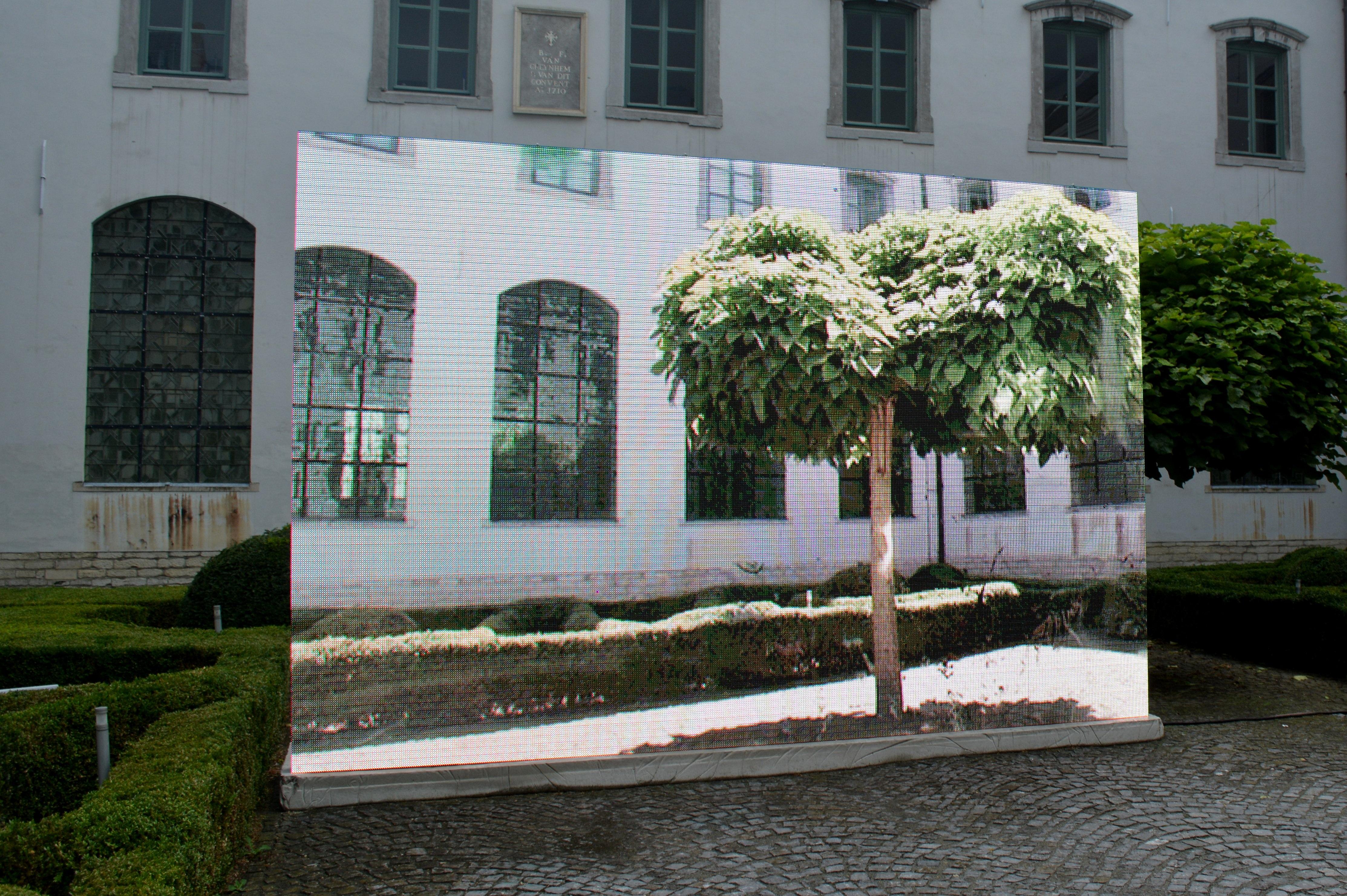 Kostenlose Foto Baum Die Architektur Villa Haus