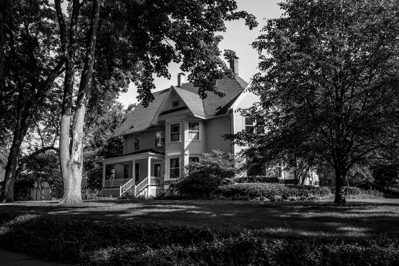 Kostenlose foto : Baum, Schwarz und weiß, die Architektur, Weiß ...