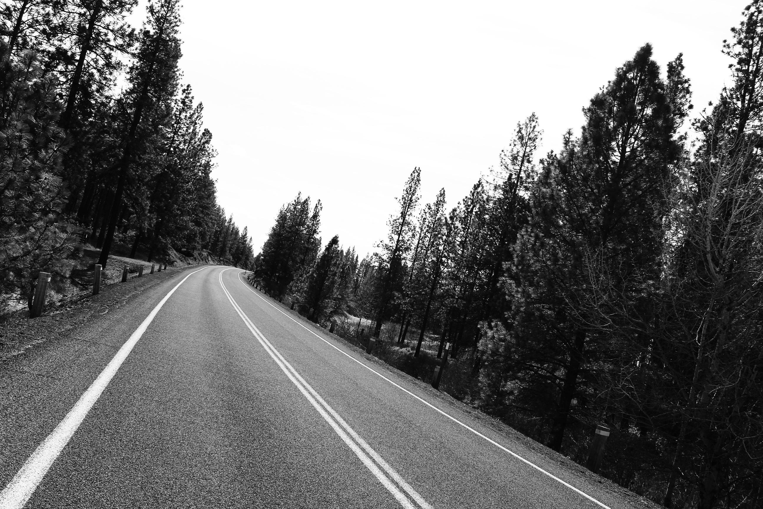 черно белые картинки дороги сегодня таблоиды