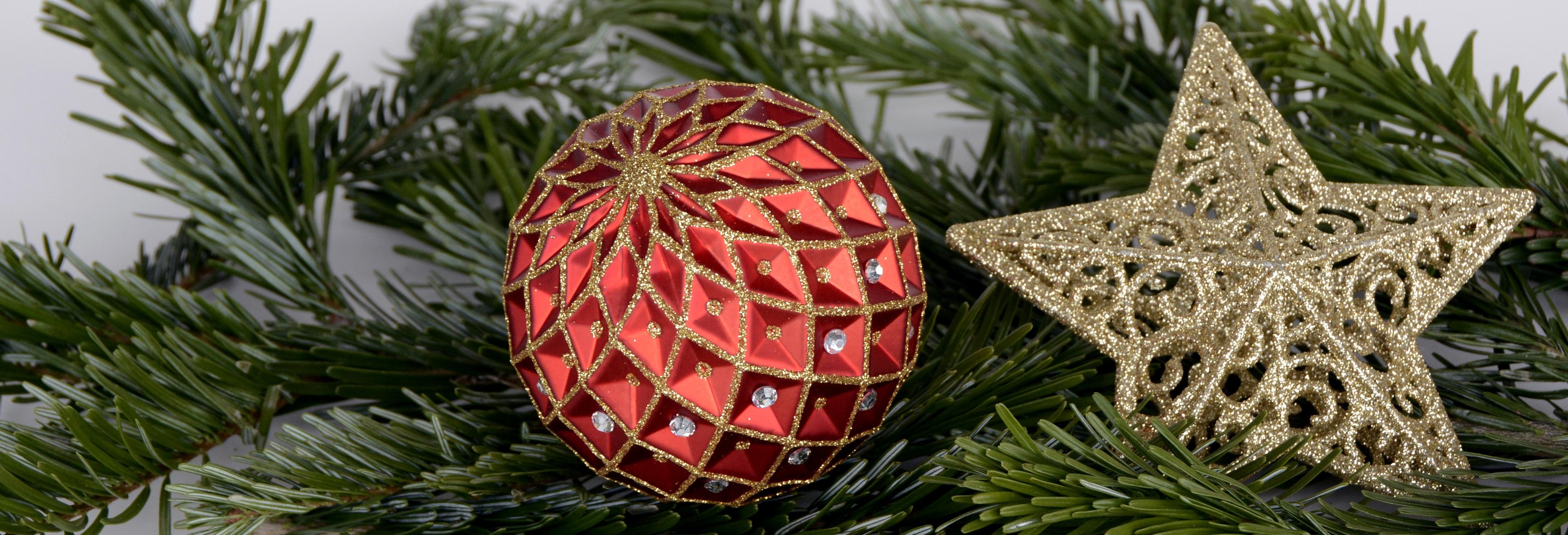 Modish Bildet : tre, gren, rød, gran, juletre, gnisten, deco, nåletre TY-06