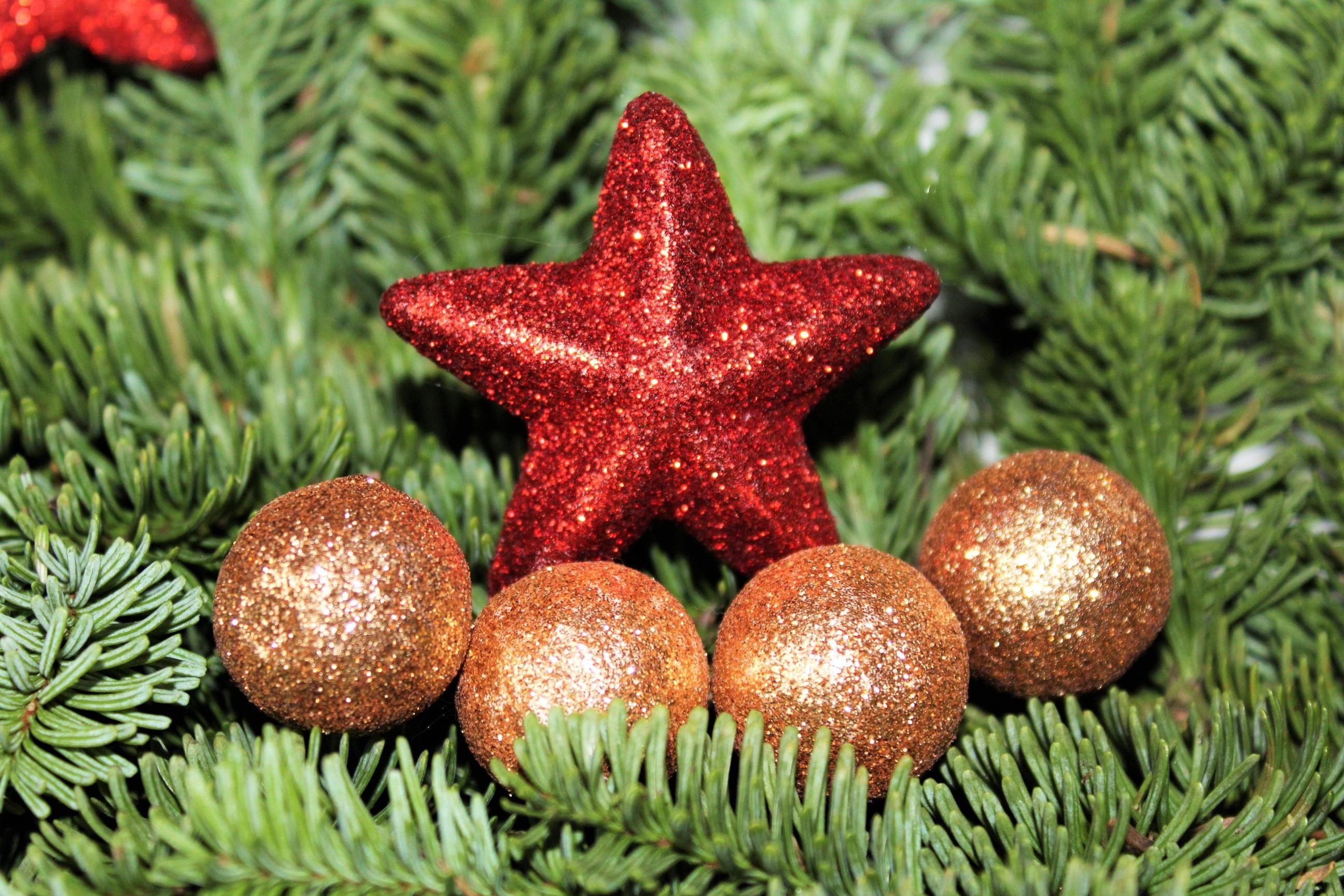 Kostenlose foto baum ast dekoration rot weihnachten - Foto dekoration ...
