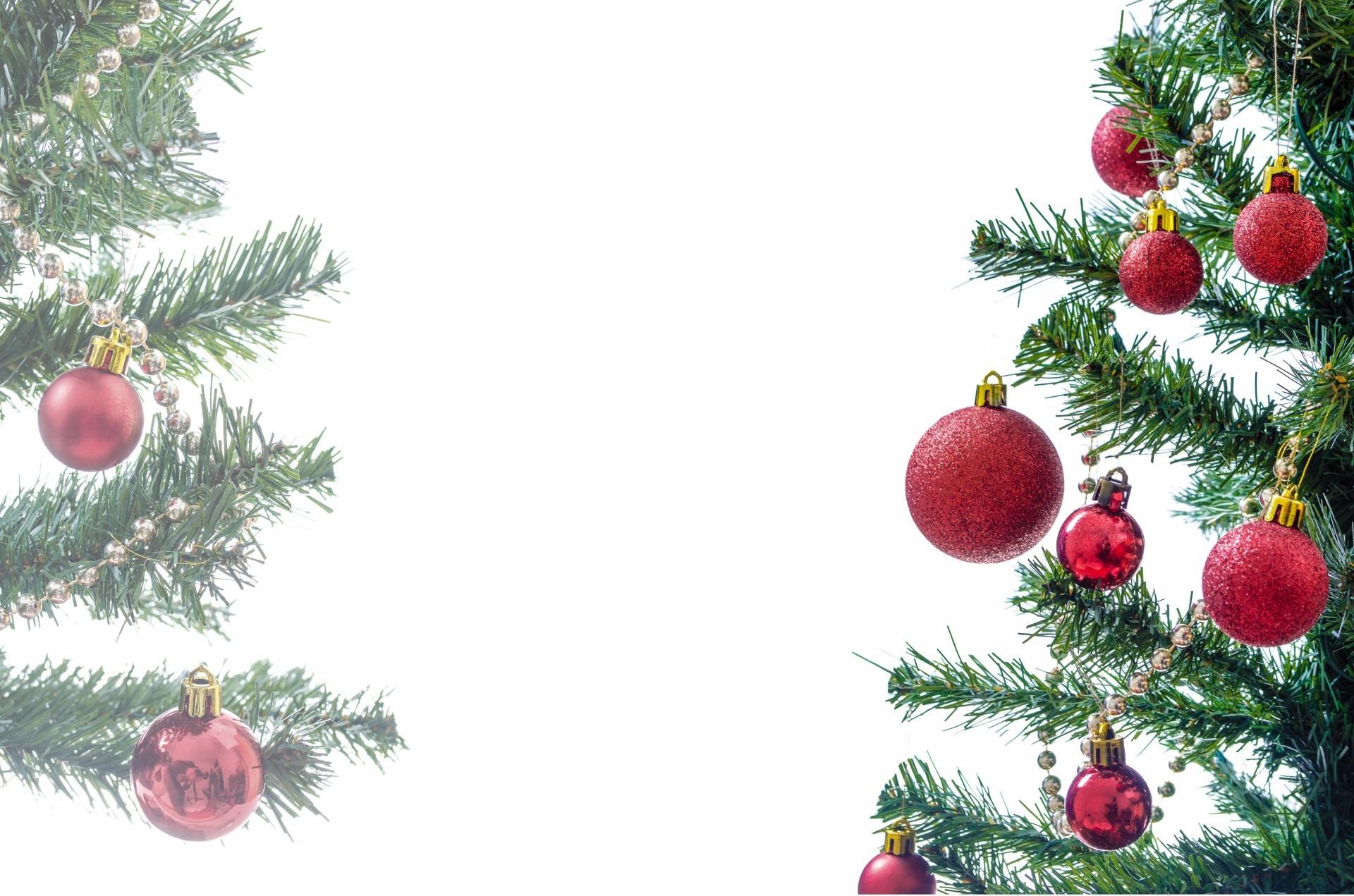Images gratuites branche isol f te cadeau vacances sapin d cor arbre de no l ornement - Images creches de noel gratuites ...