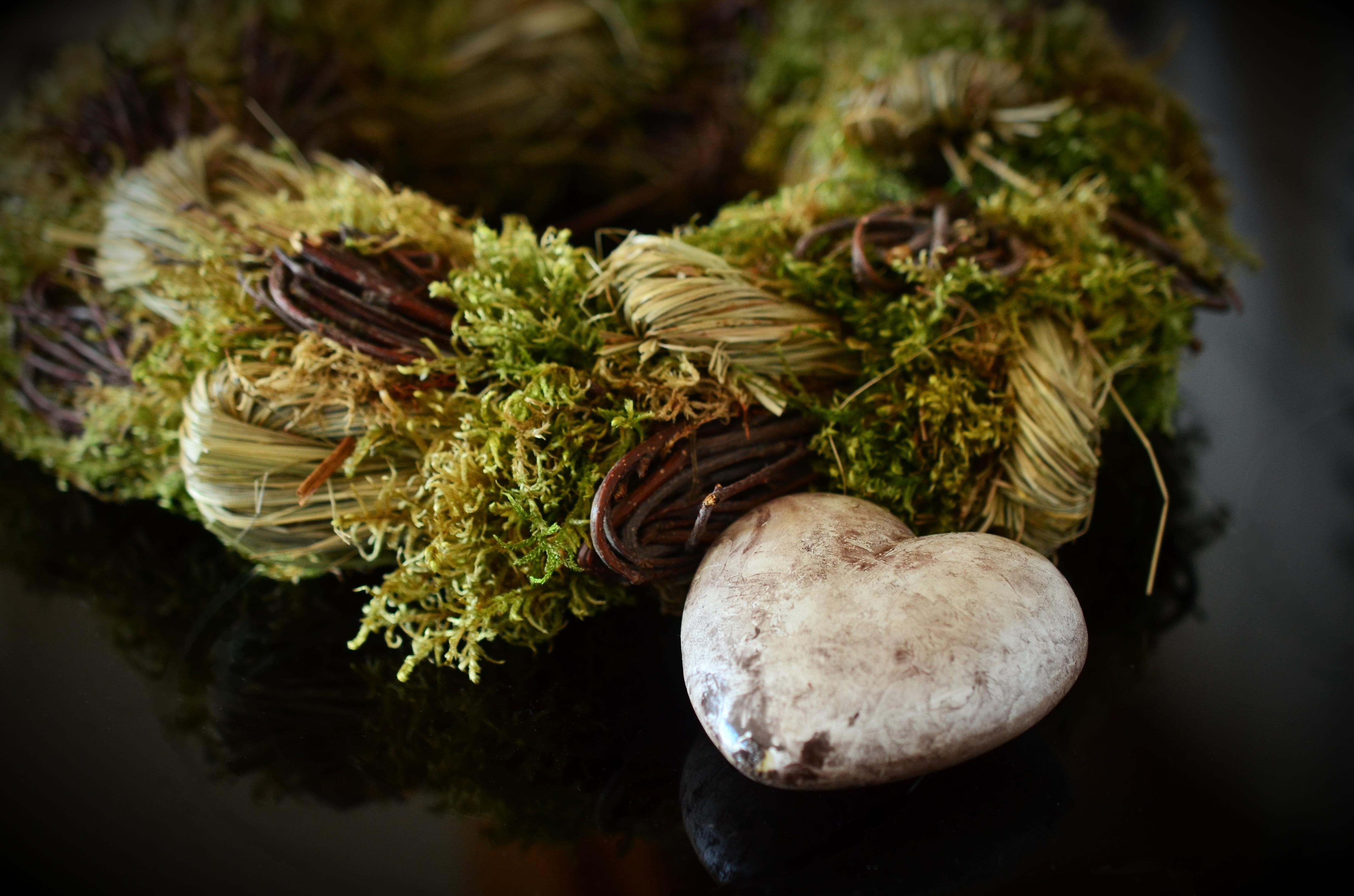 Images gratuites arbre branche plante feuille fleur c ur produire l 39 automne romantique - Image automne gratuite imprimer ...