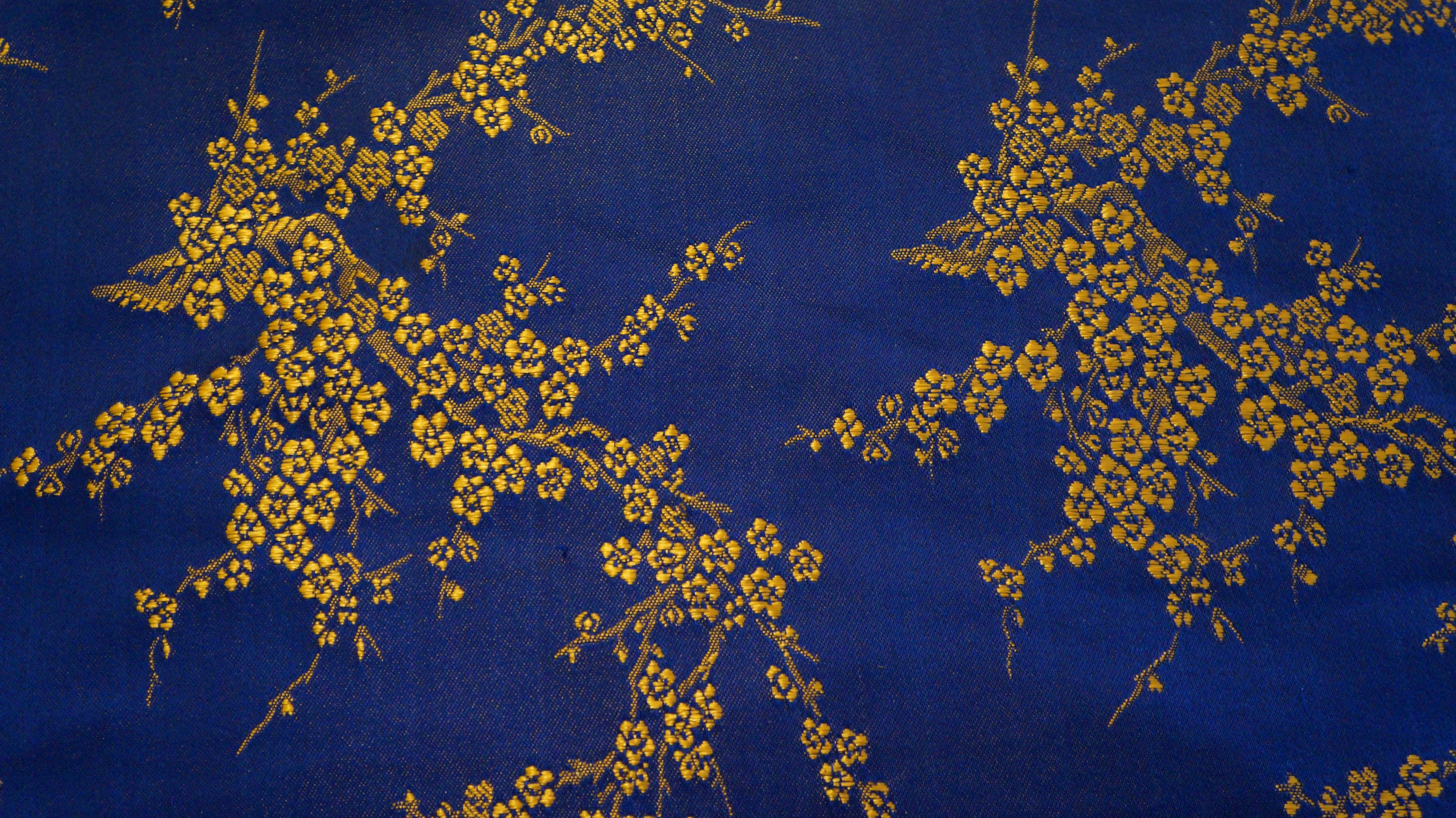 Gambar Pohon Cabang Menanam Sinar Matahari Tekstur Daun