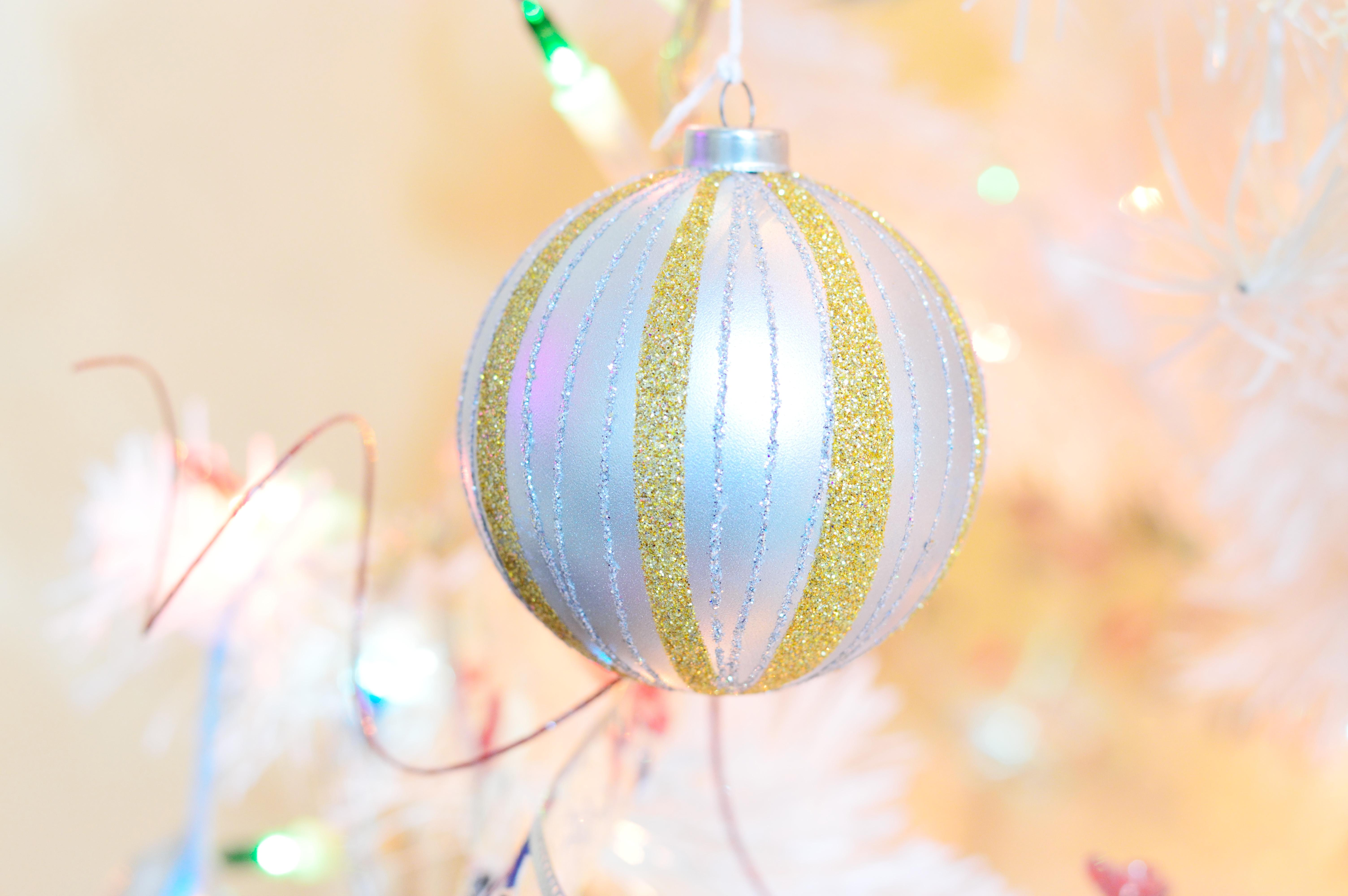 Free Images Branch Snow Blur White Leaf Round Flower