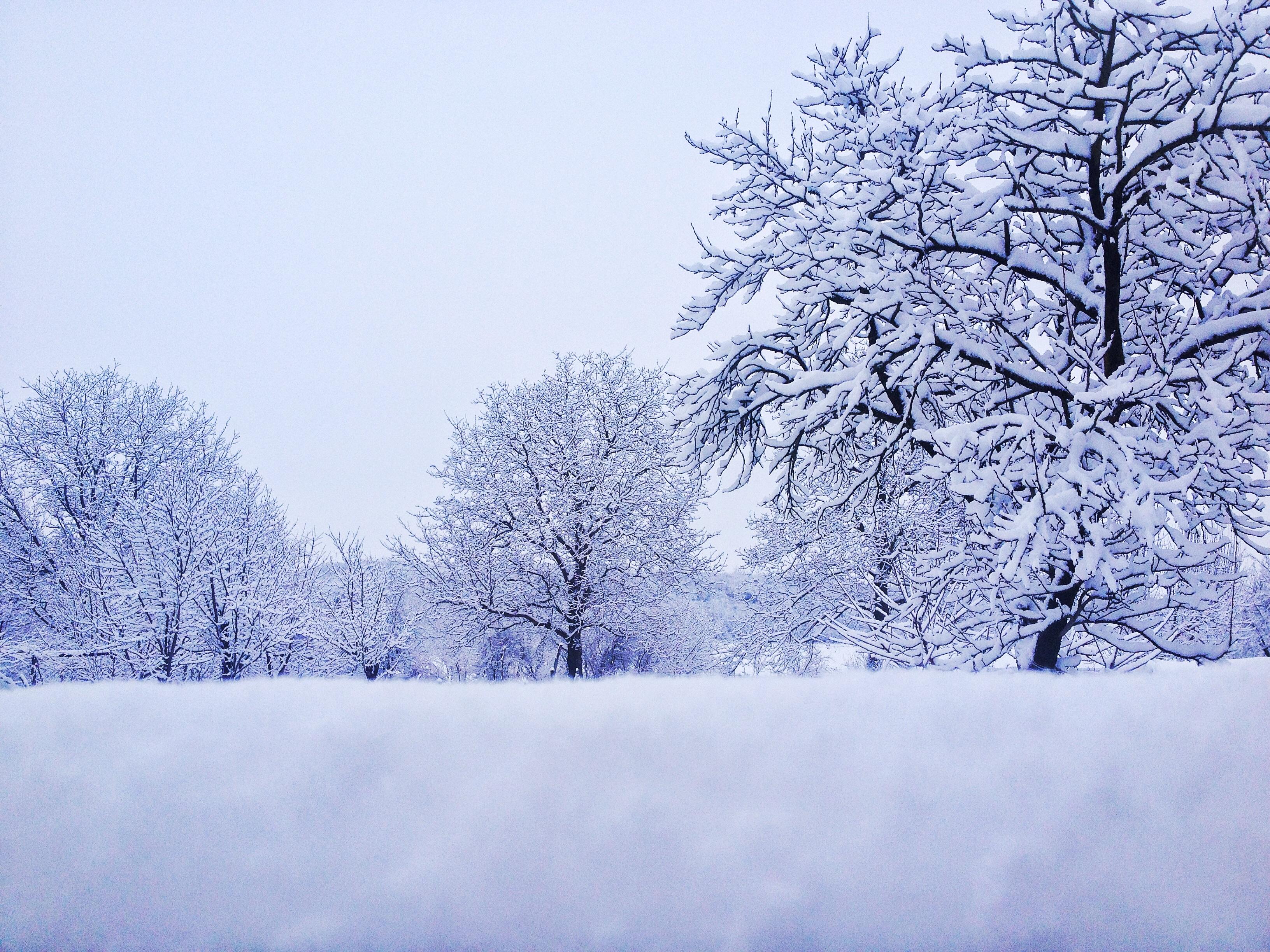 Открытки холодная зима