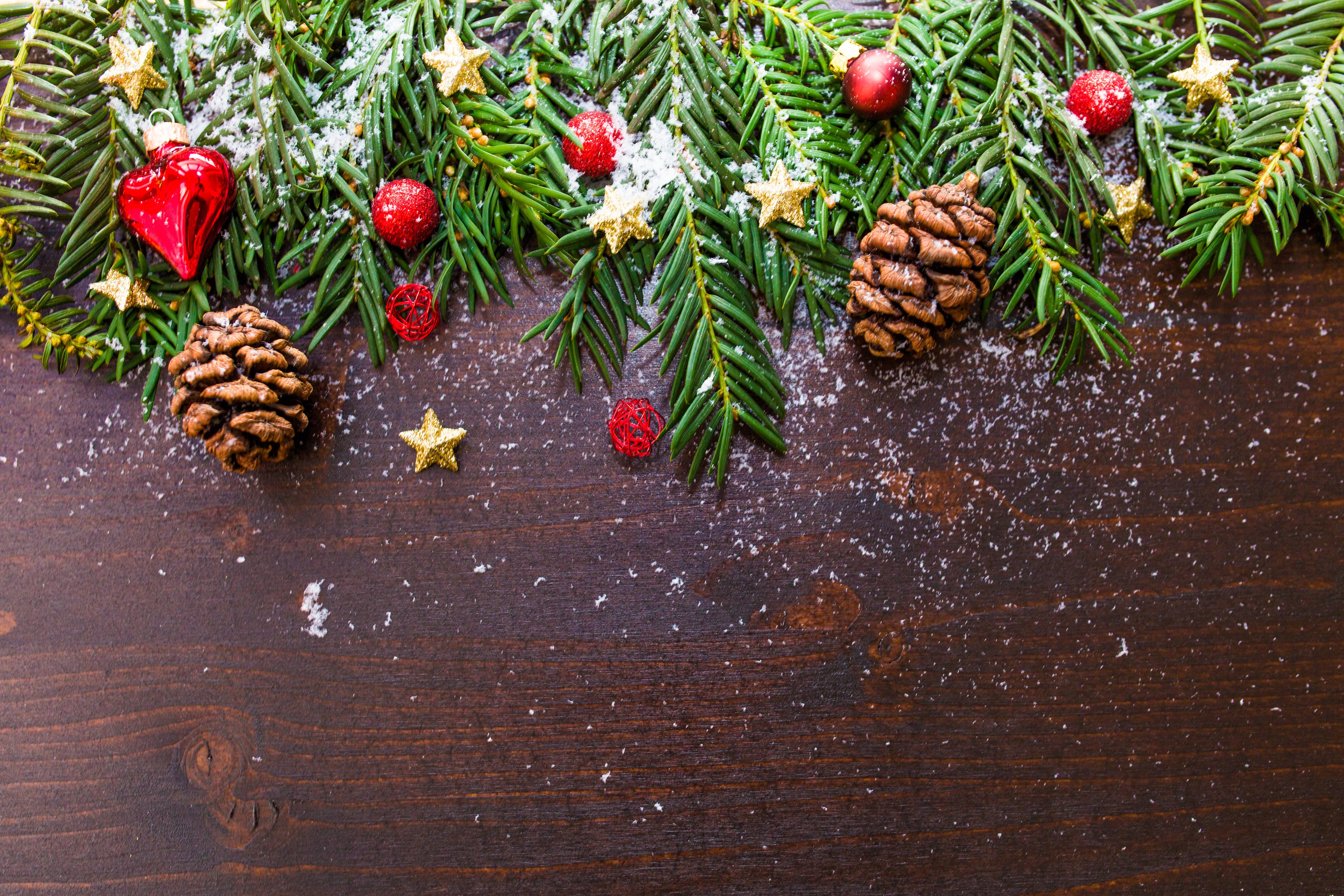 Free branch snow leaf flower celebration pine color